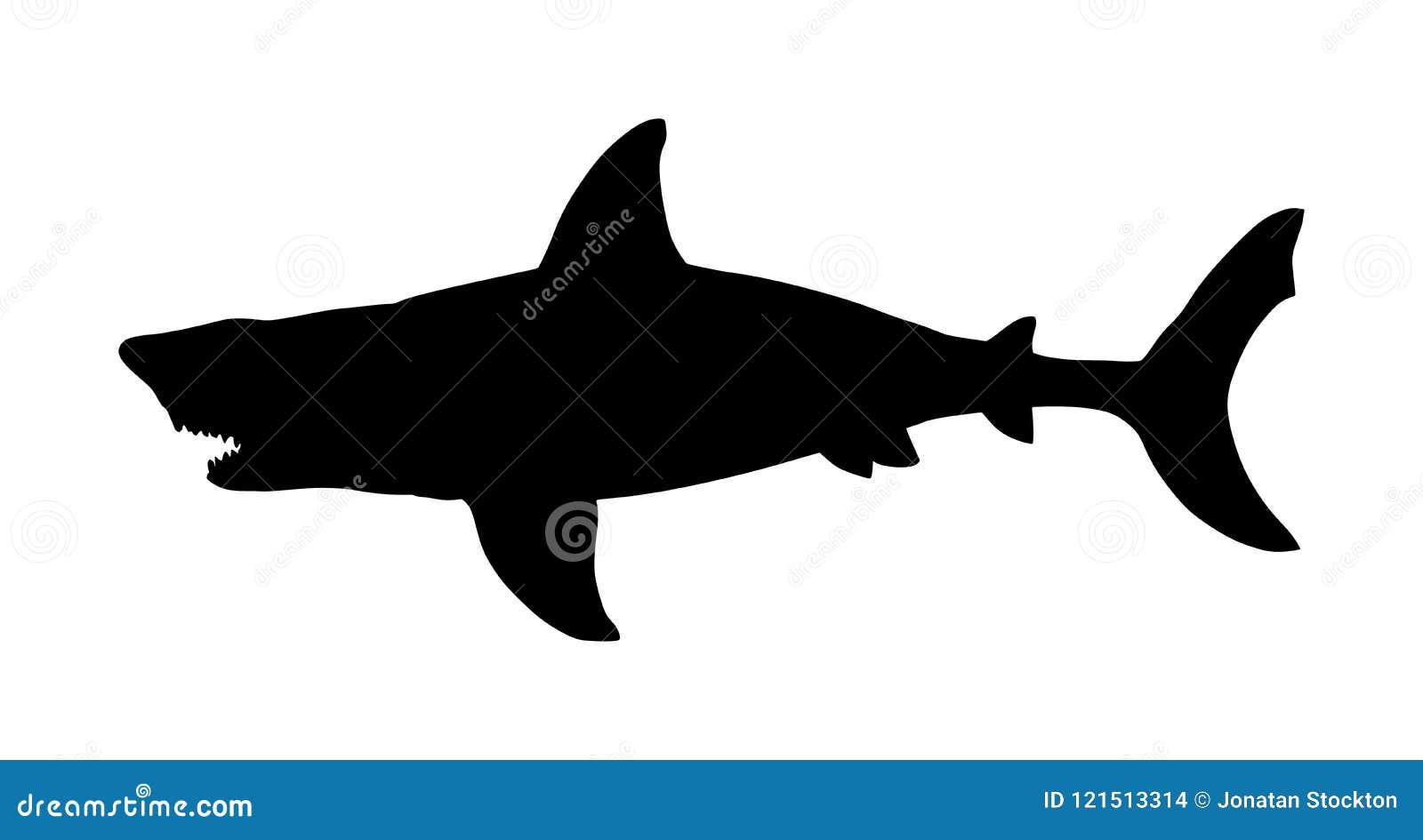 鲨鱼传染媒介在白色背景隔绝的剪影例证