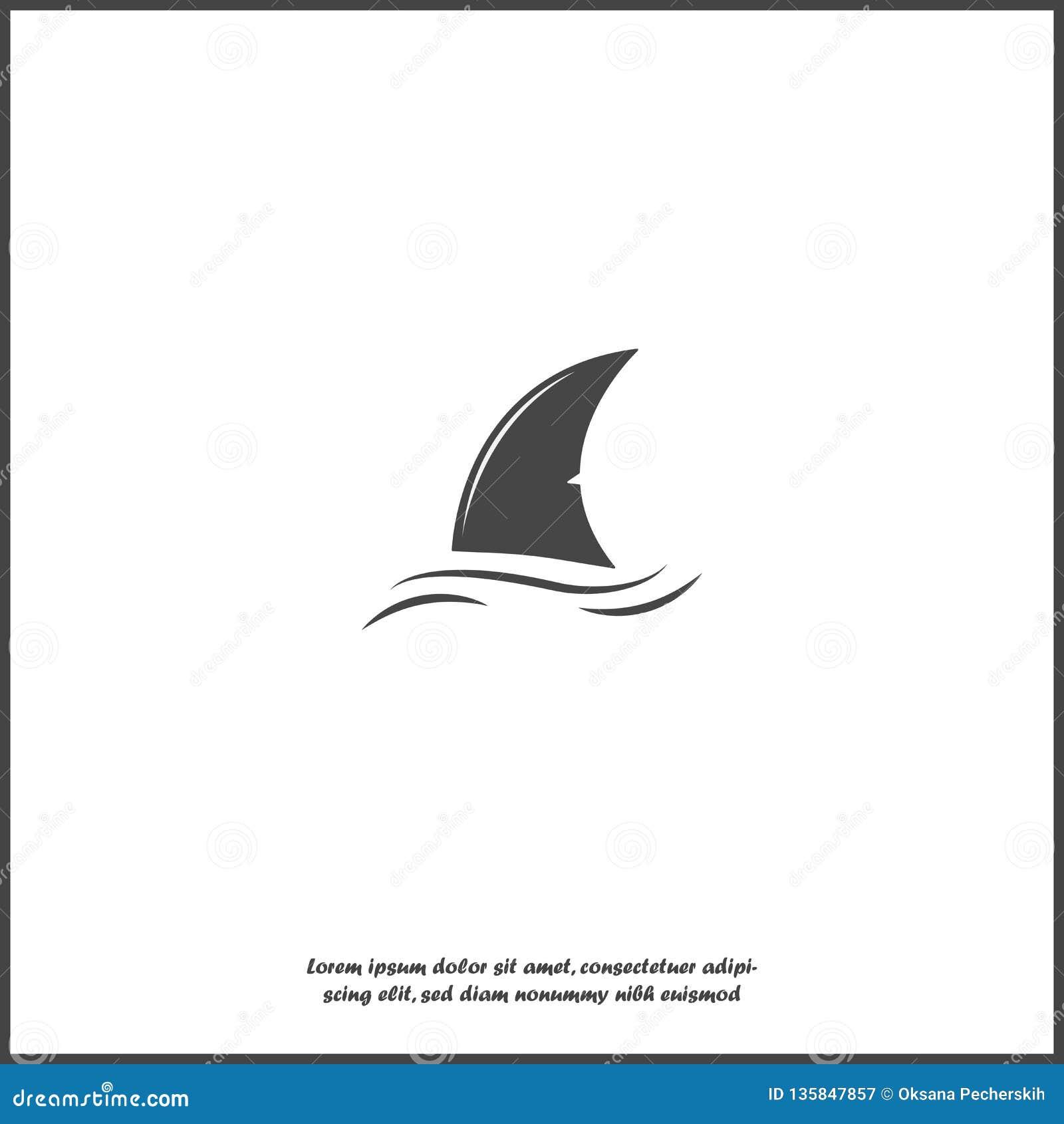 鲨鱼飞翅传染媒介象 飞翅在白色被隔绝的背景的水中