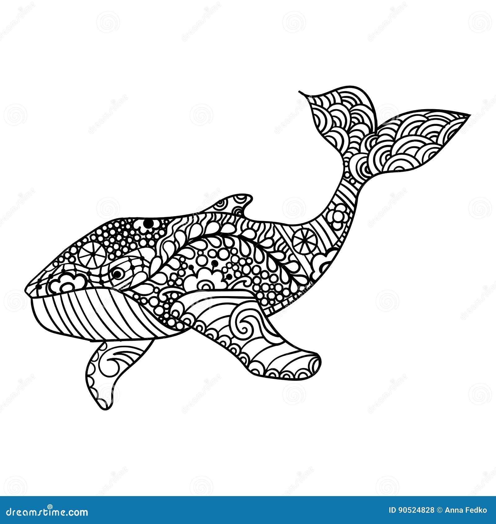 鲸鱼,传染媒介zentangle印刷品,成人着色页 手拉艺术性地,装饰物仿造了鲸鱼例证
