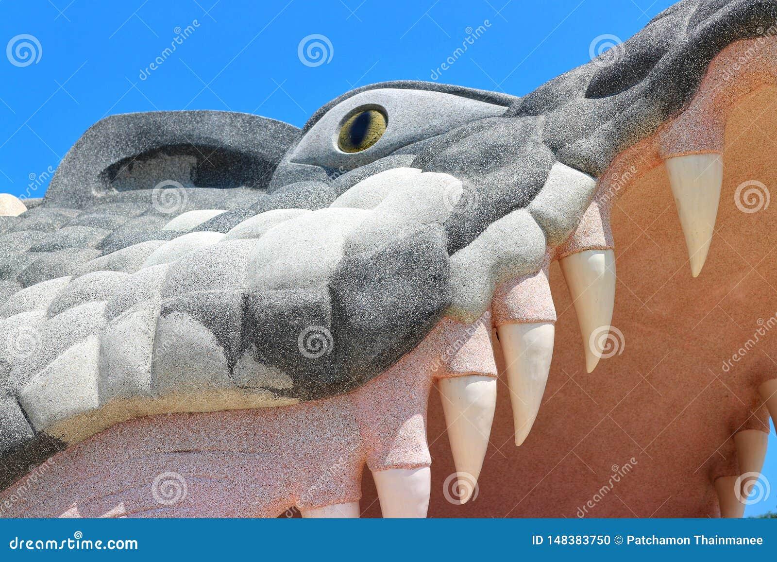 鳄鱼灰浆张它的与大牙的嘴 美好的天空蔚蓝背景