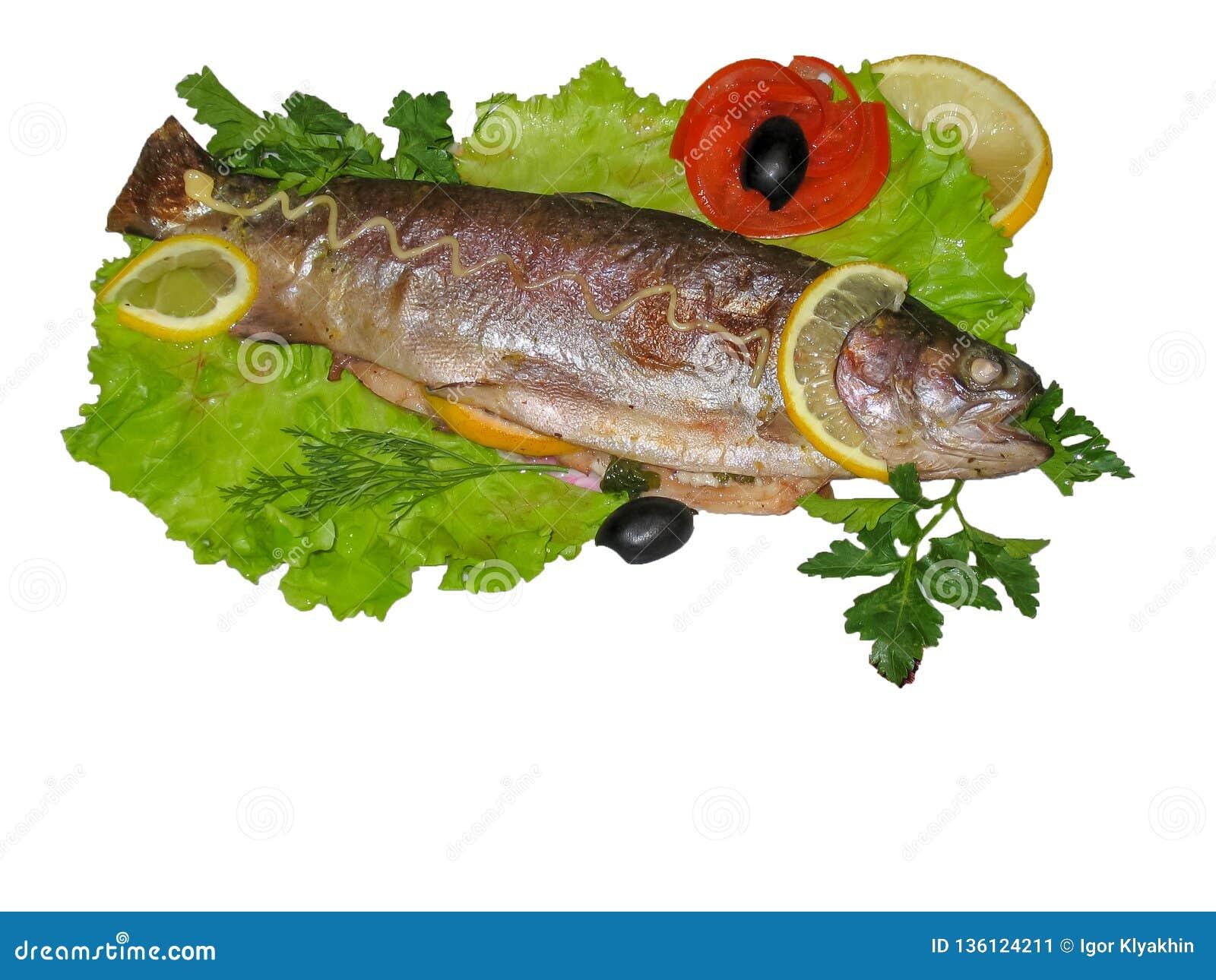 鳟鱼在沙拉孤立叶子烘烤了说谎