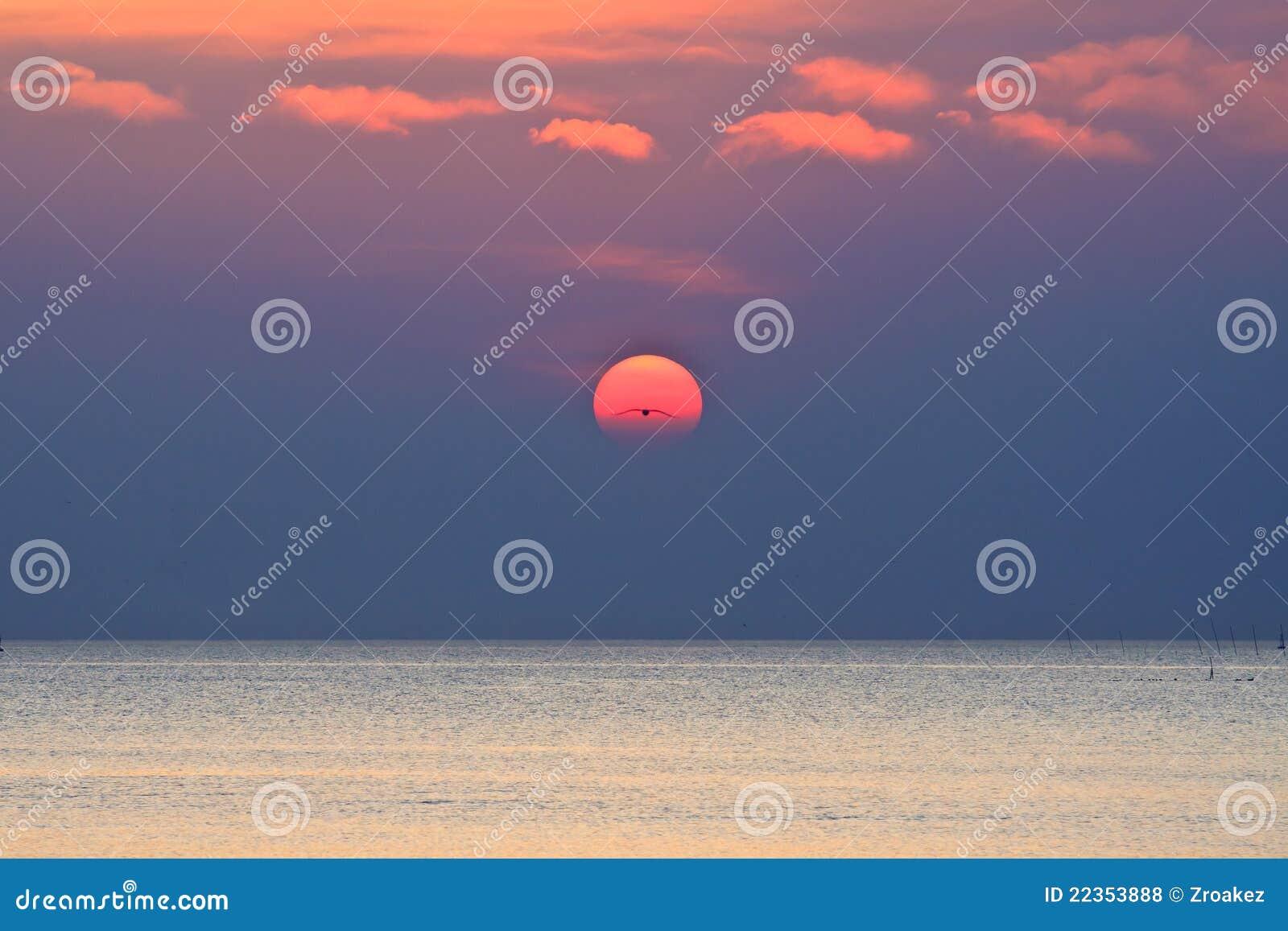 鸟海运唯一日落