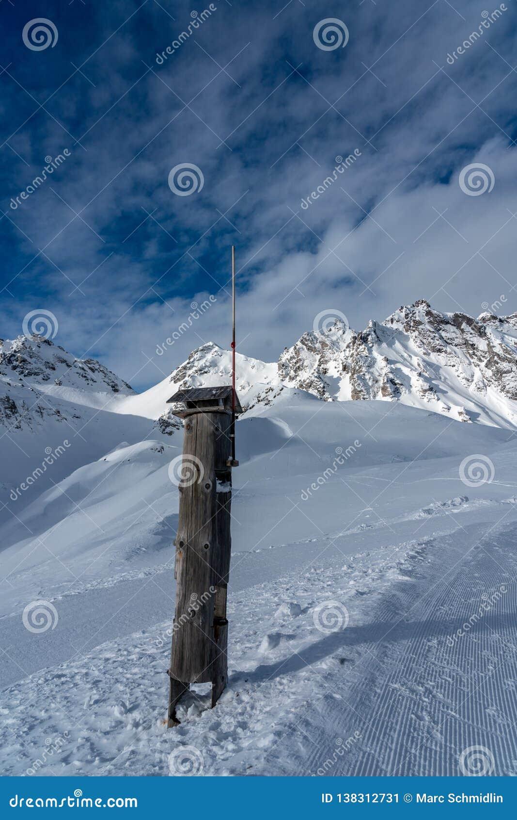 鸟的木哺养的地方与一根避雷针在高阿尔卑斯