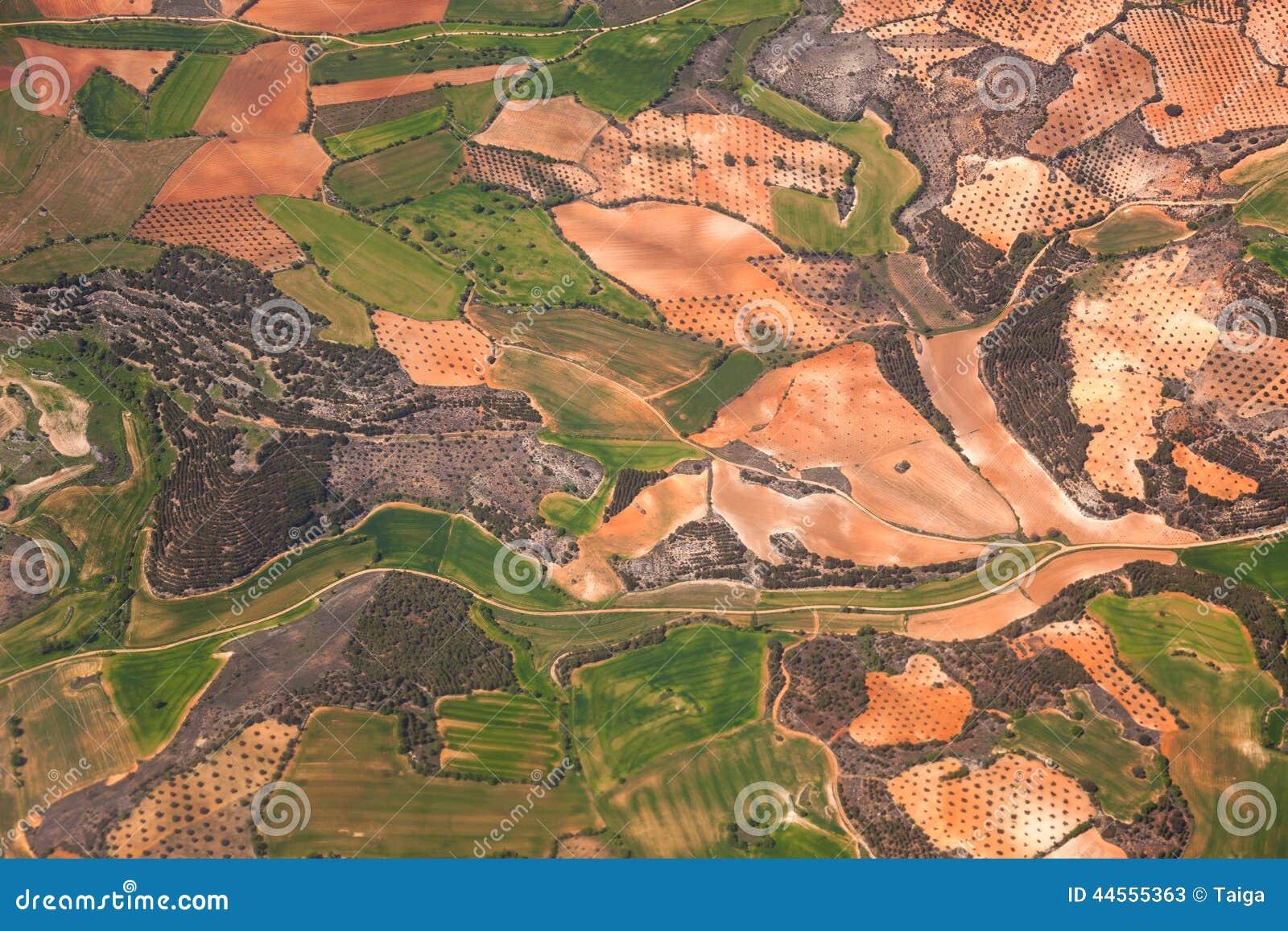 鸟瞰图乡区/绿色领域和橄榄树种植园/