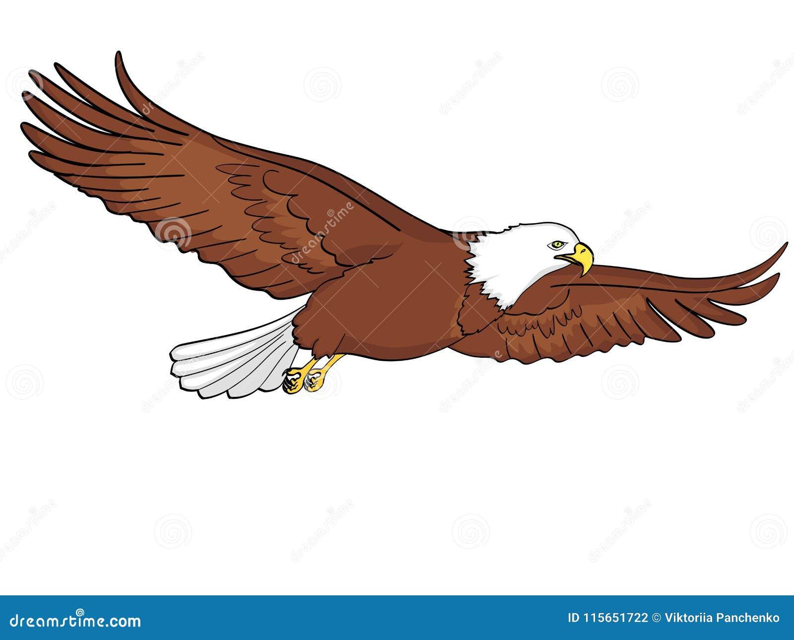 鸟老鹰,猎鹰 一个仿制减速火箭的可笑的样式的传染媒介 背景剪报查出的对象路径白色