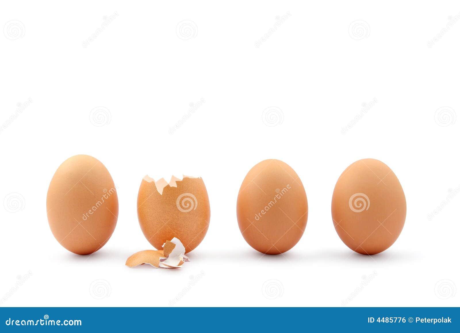 鸡蛋四孵化了一