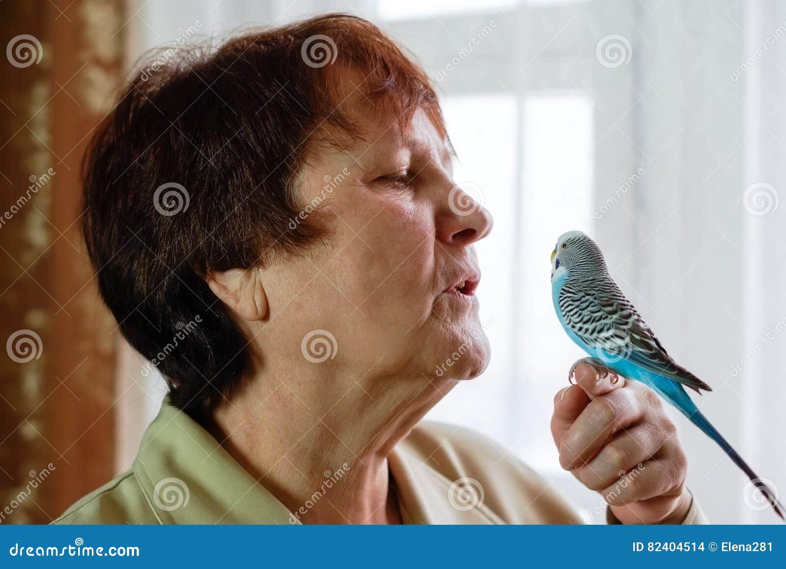 鹦哥Melopsittacus undulatus鹦鹉坐w的手