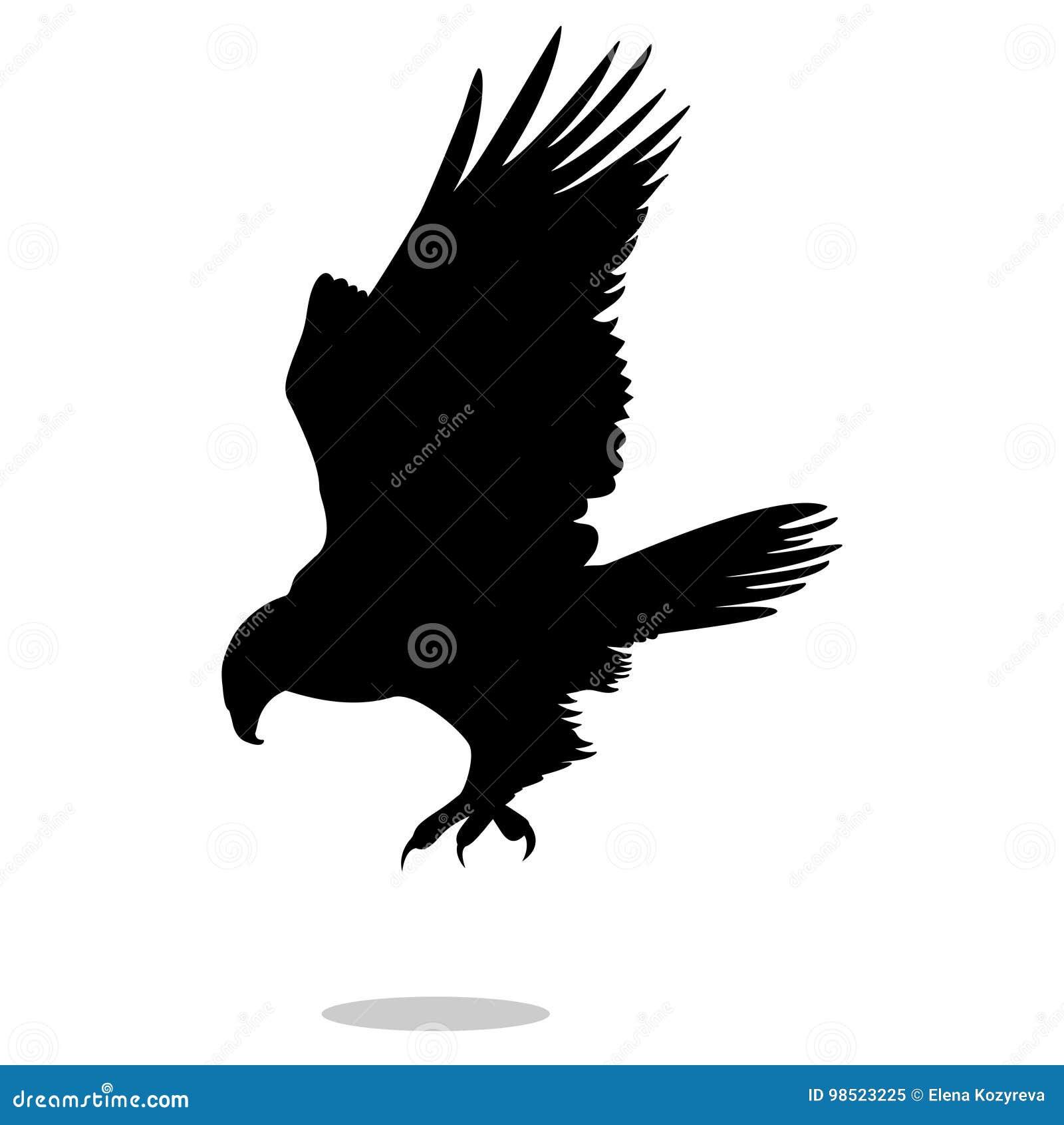 鹰老鹰猎鹰鸟黑色剪影动物
