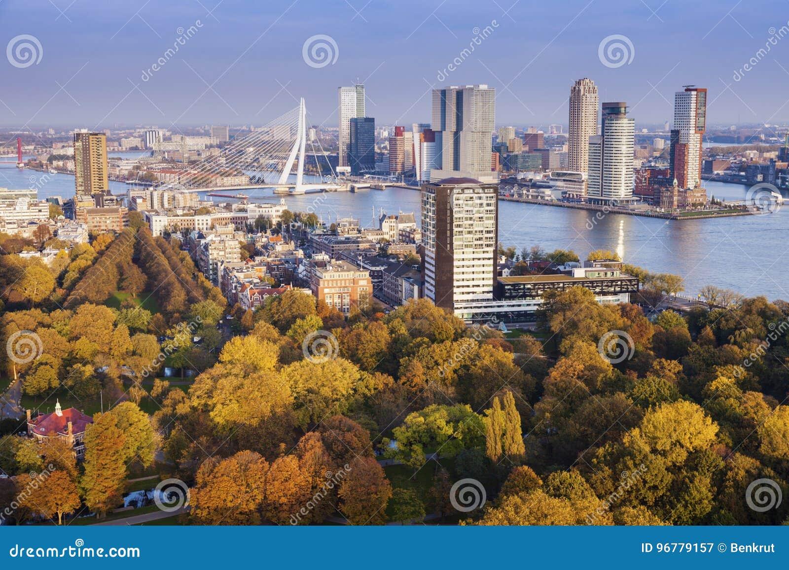 鹿特丹空中全景