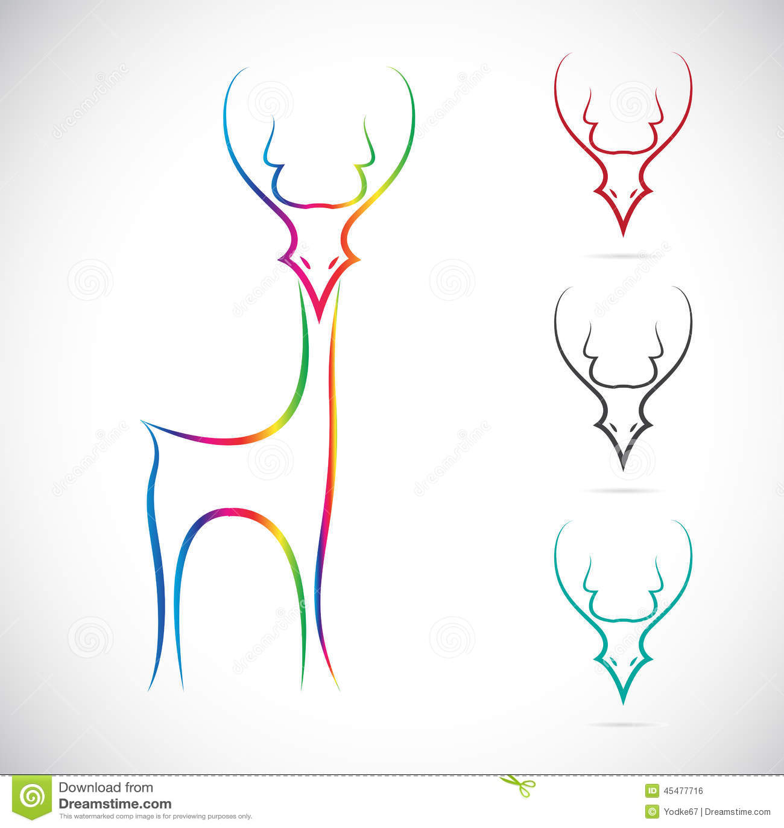 鹿的传染媒介图象