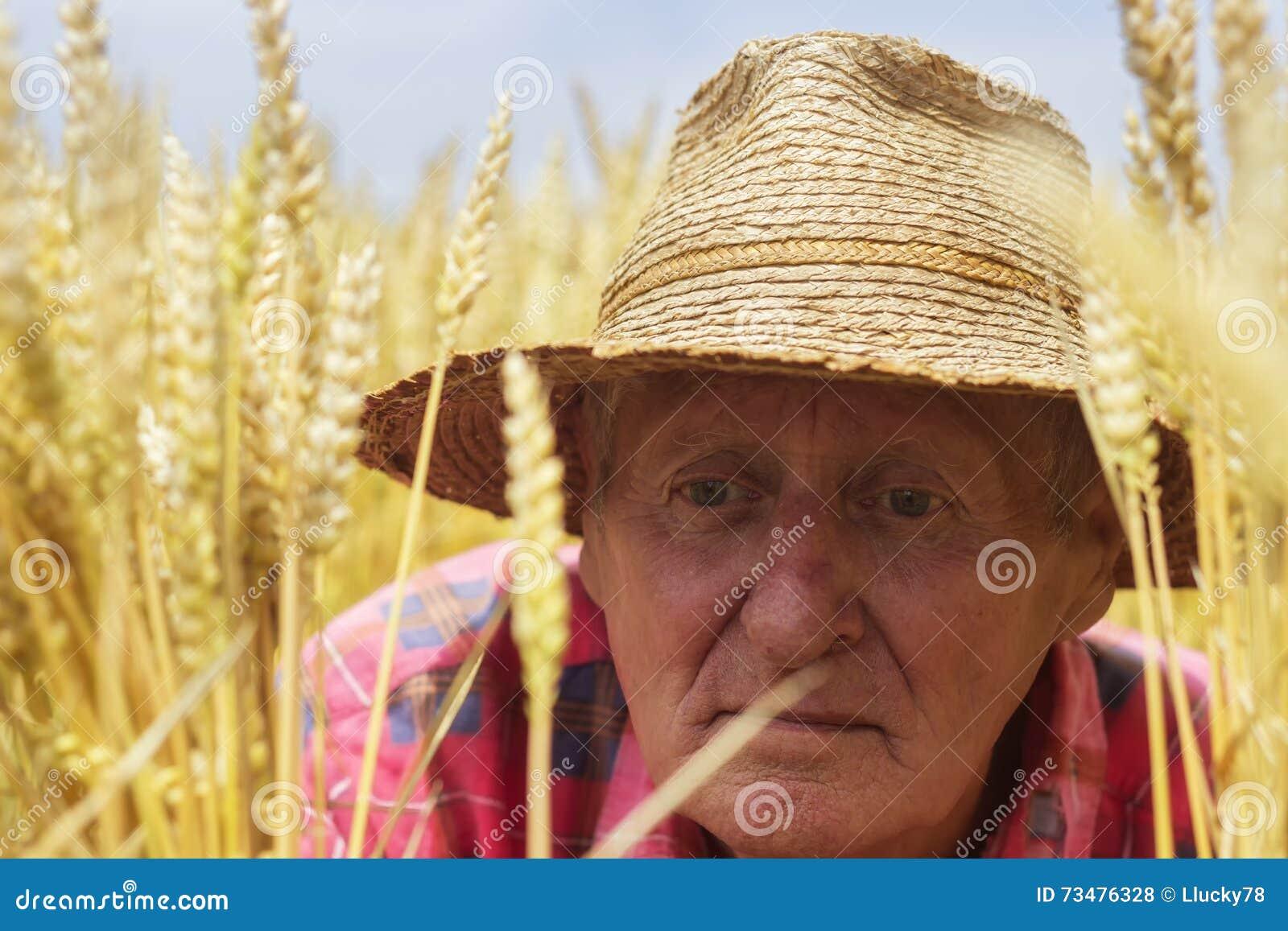 麦田关闭的农夫
