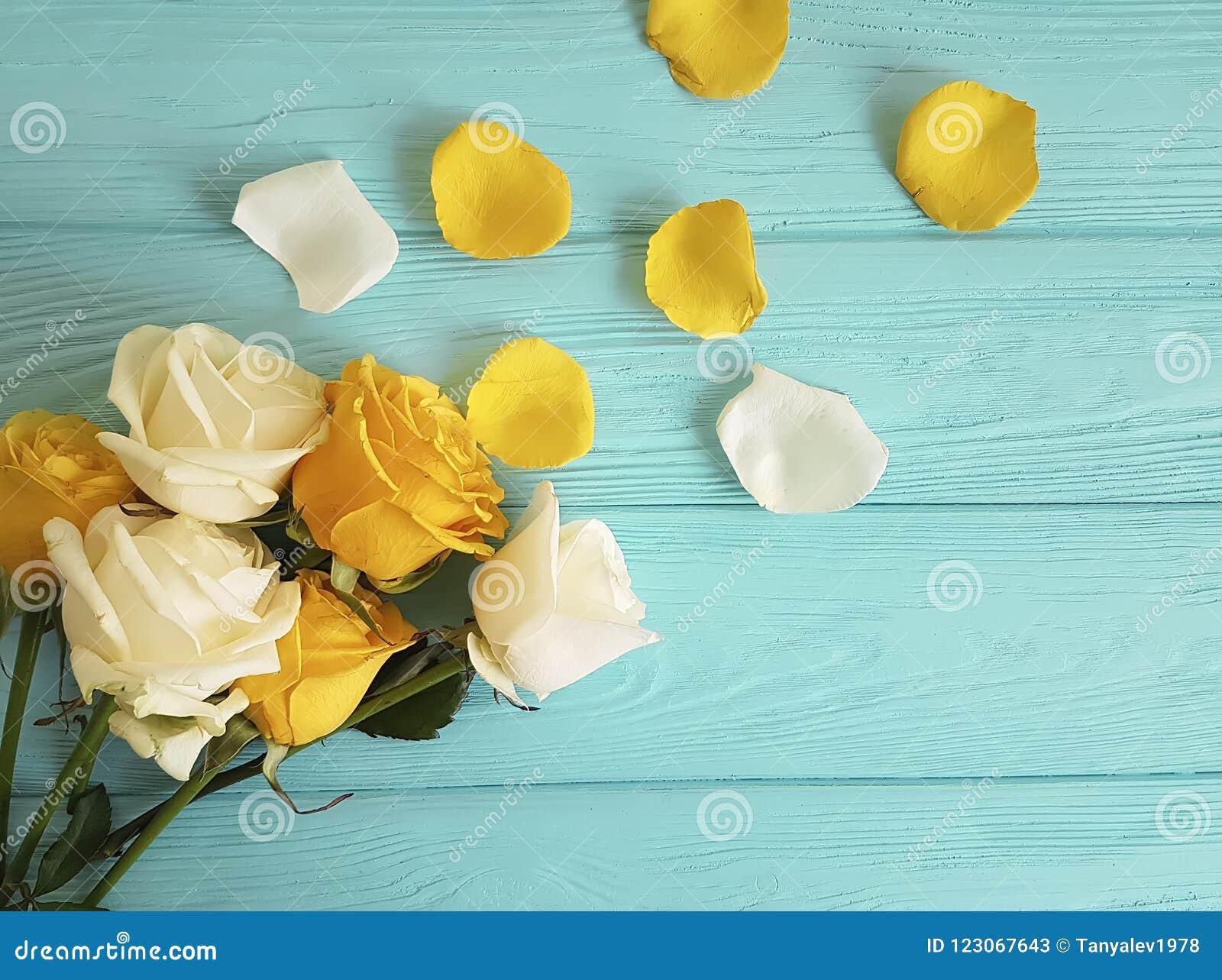黄色在蓝色木背景的玫瑰生气勃勃,浪漫庆祝框架