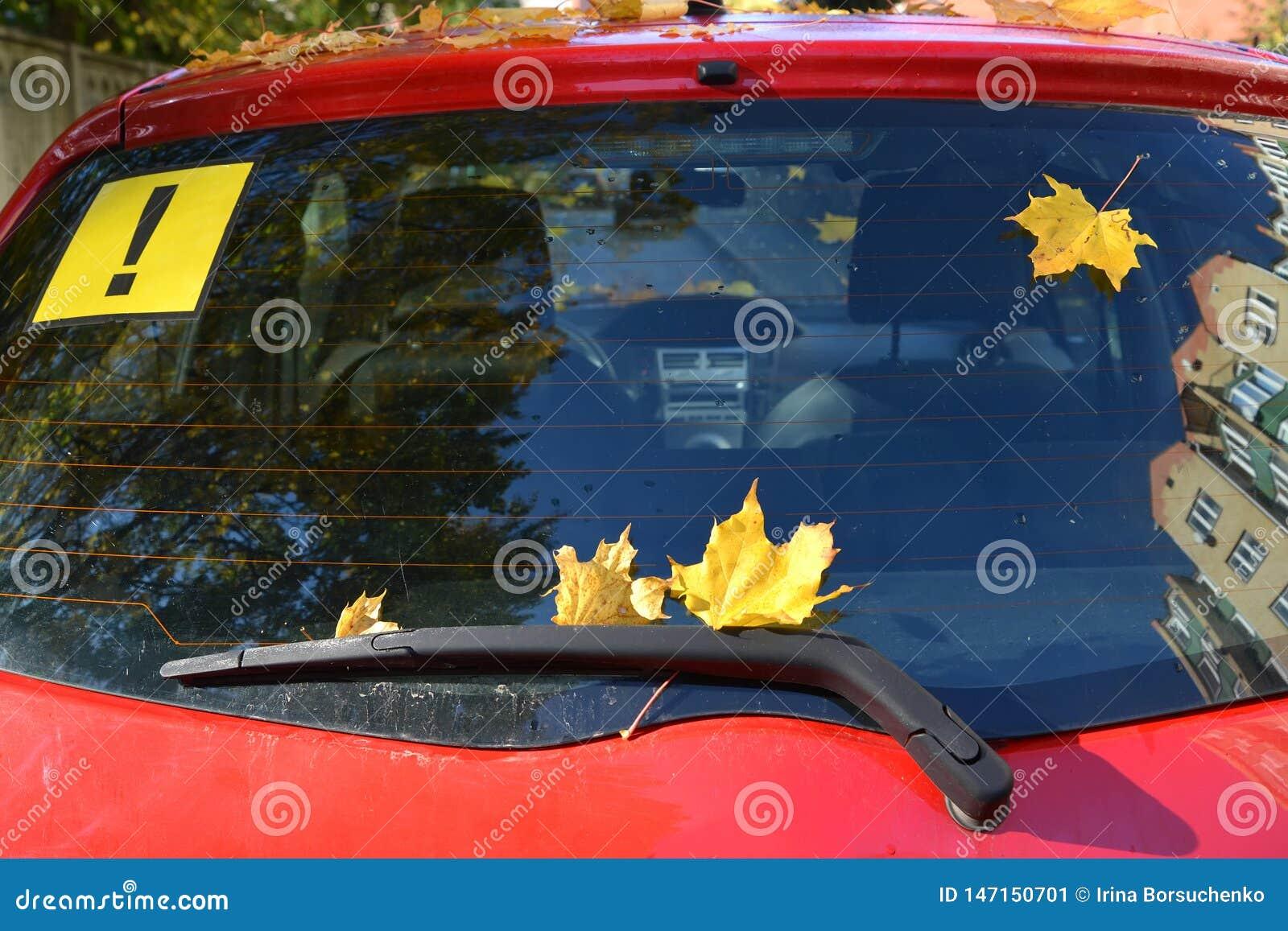 黄色枫叶和贴纸与惊叹号在汽车的后方屏幕上