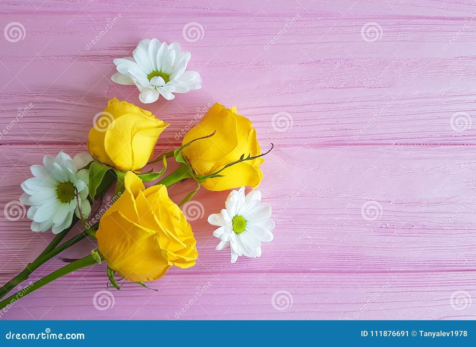 黄色玫瑰菊花在桃红色木背景的框架葡萄酒