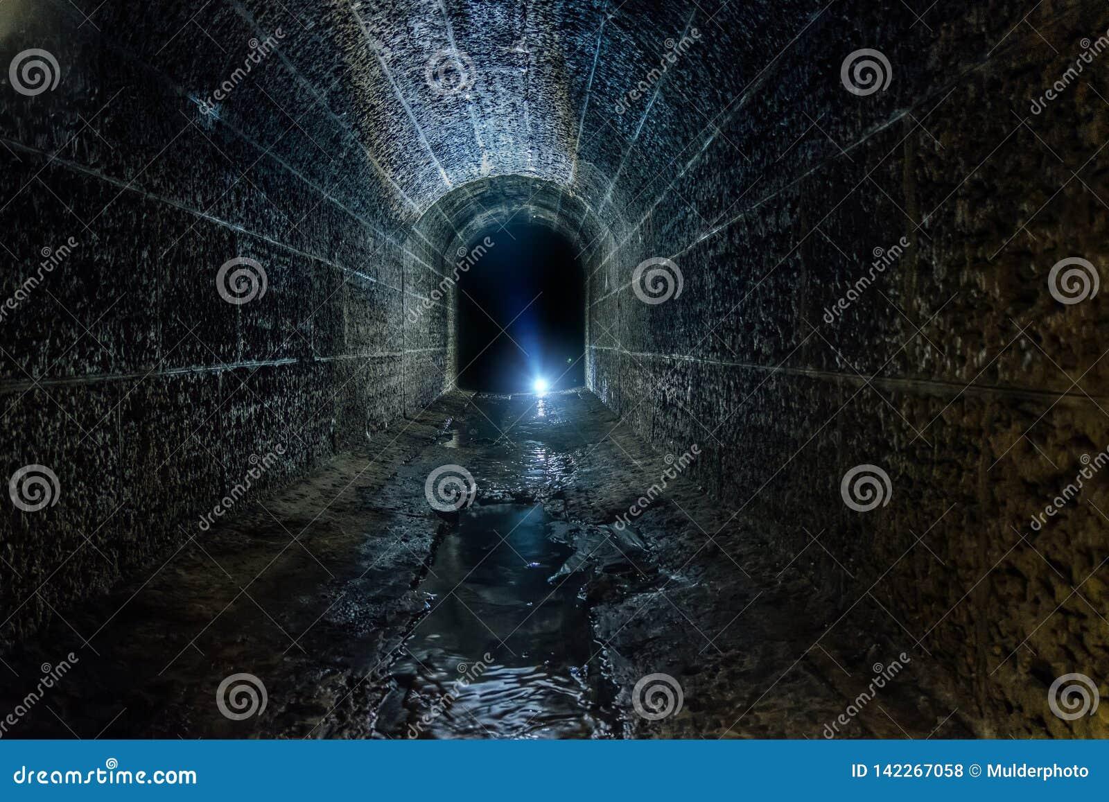 黑暗和蠕动的老历史有圆顶被充斥的地下排水设备隧道