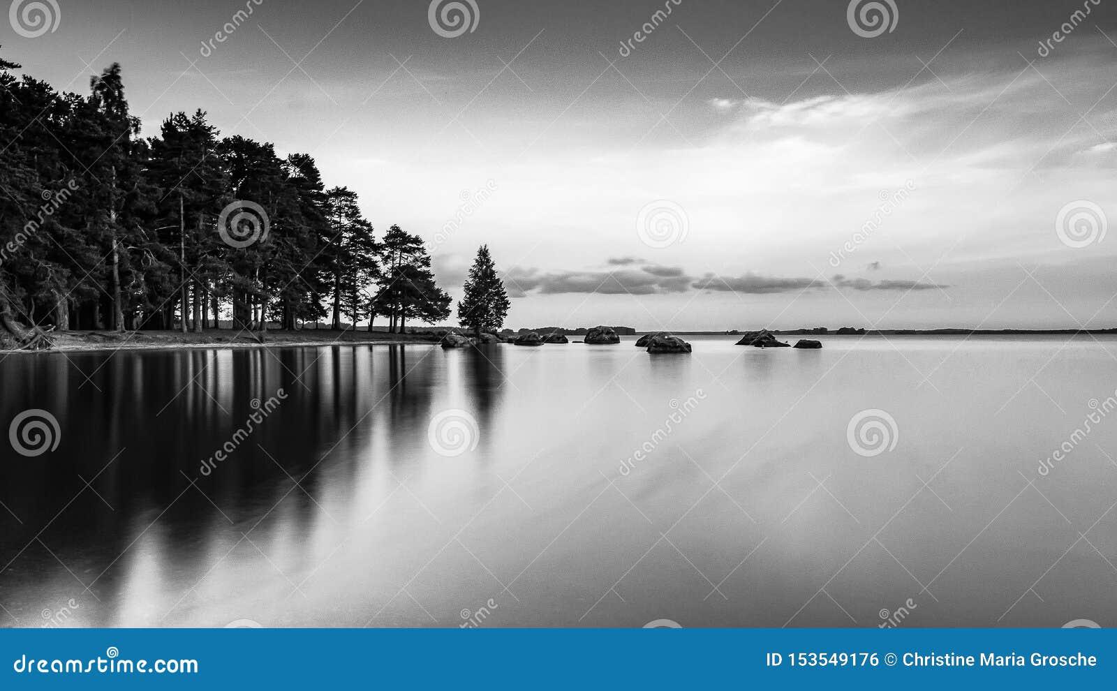 黑白梦想的北欧盛夏的风景