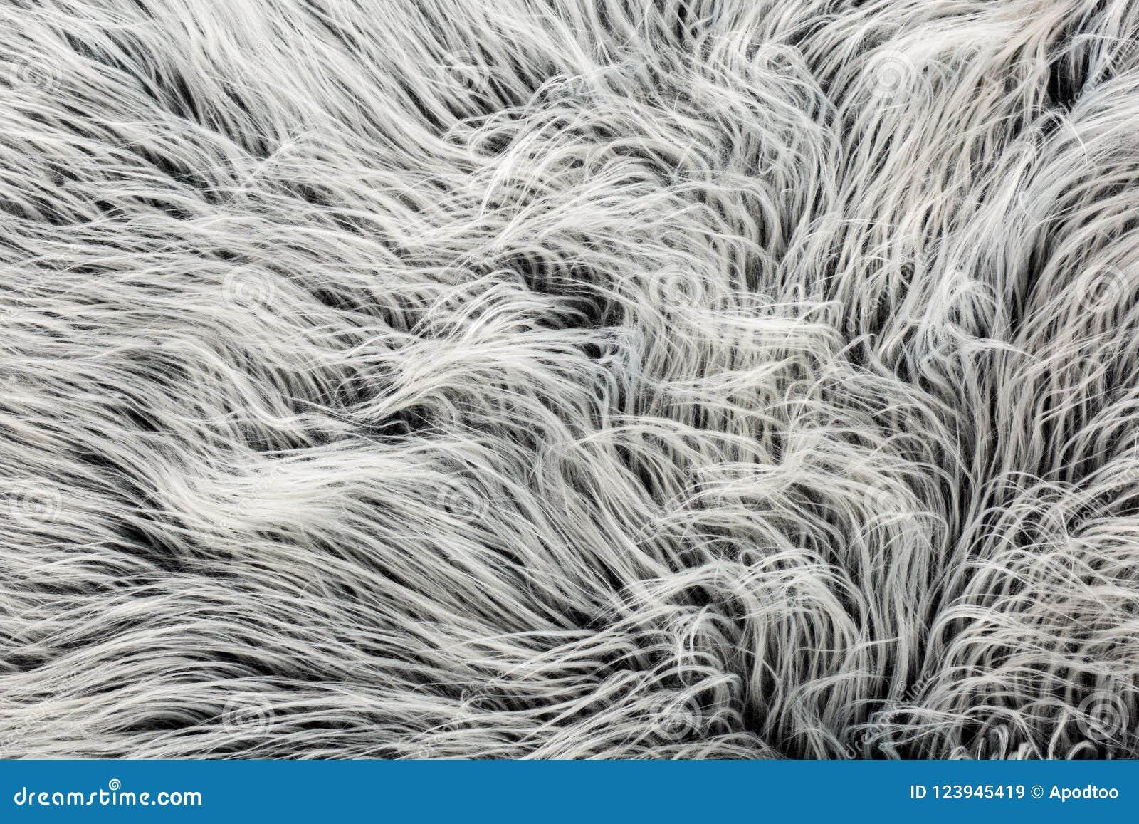 黑白色灰色毛皮纹理羊魄