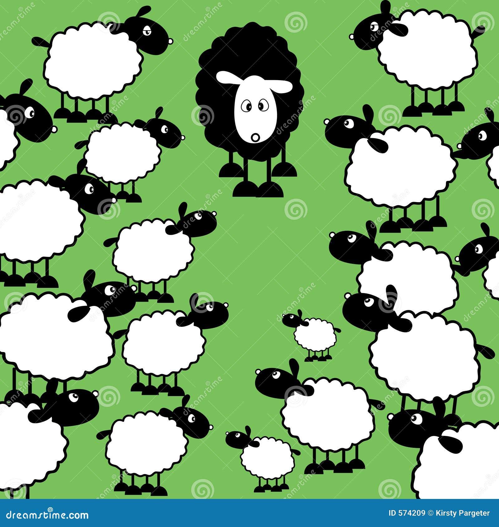 黑色系列绵羊