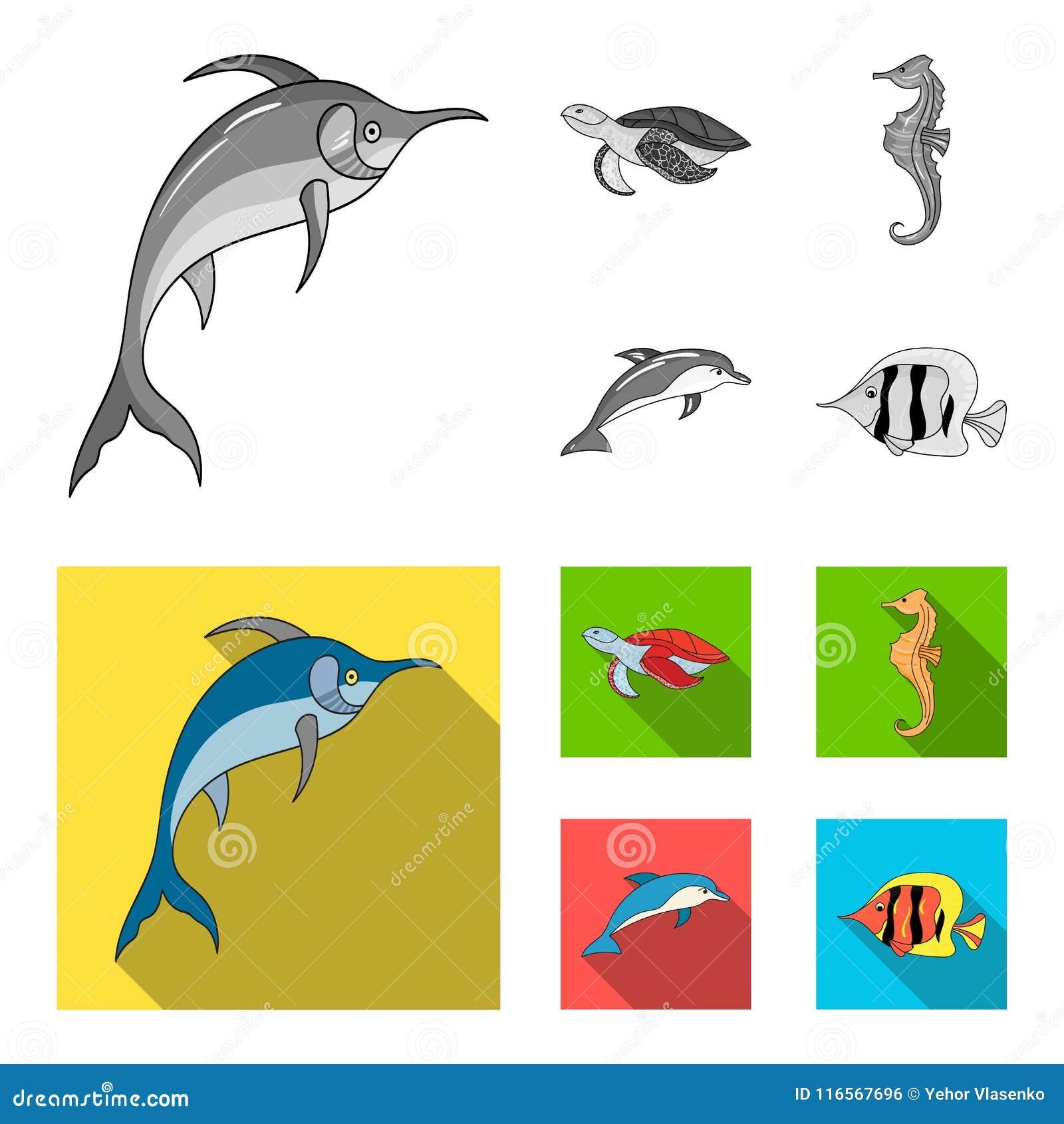 默林、乌龟和其他种类 海洋动物在单色,平的样式传染媒介标志库存设置了汇集象