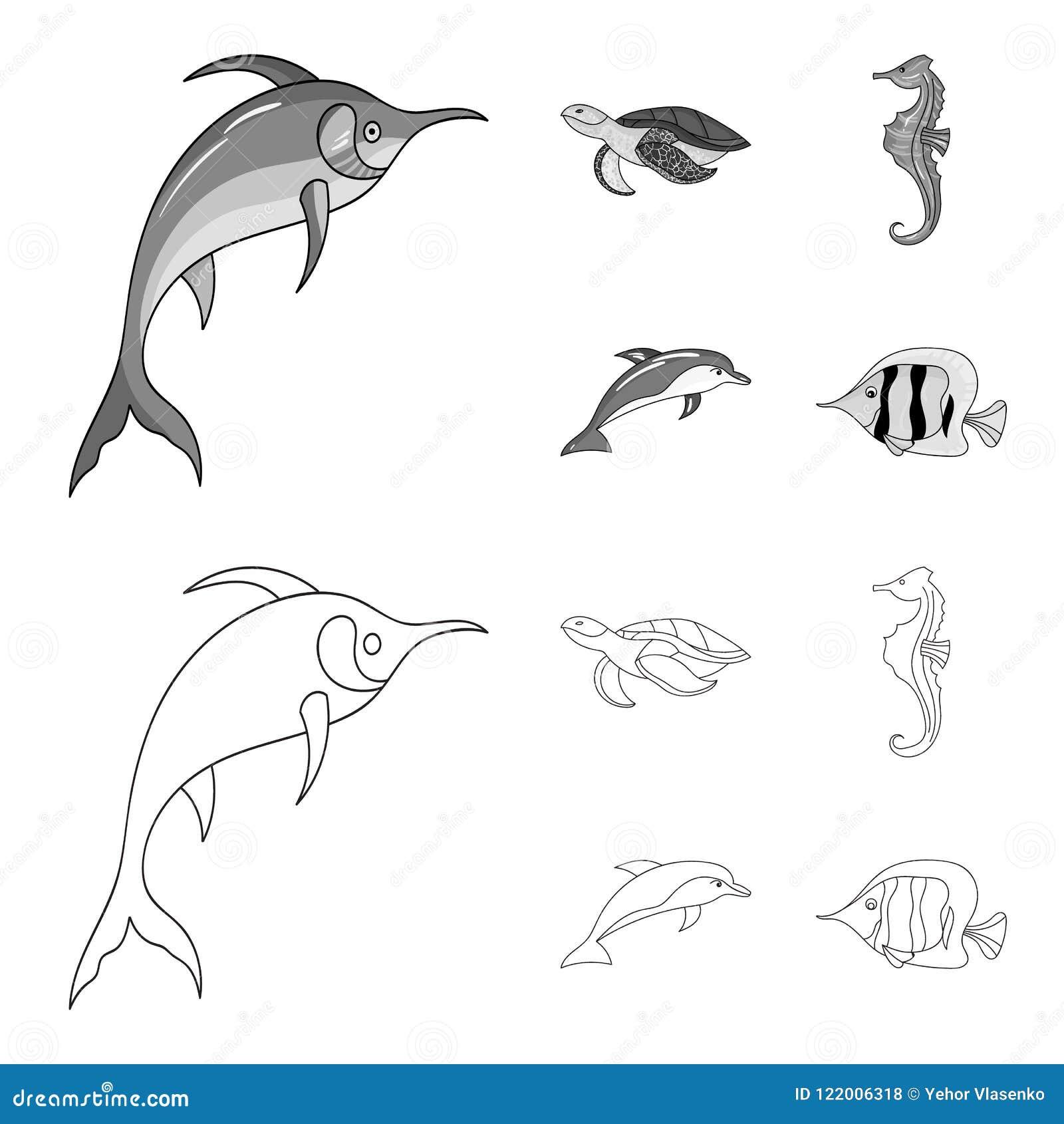 默林、乌龟和其他种类 海洋动物设置了在概述,单色样式传染媒介标志股票的汇集象