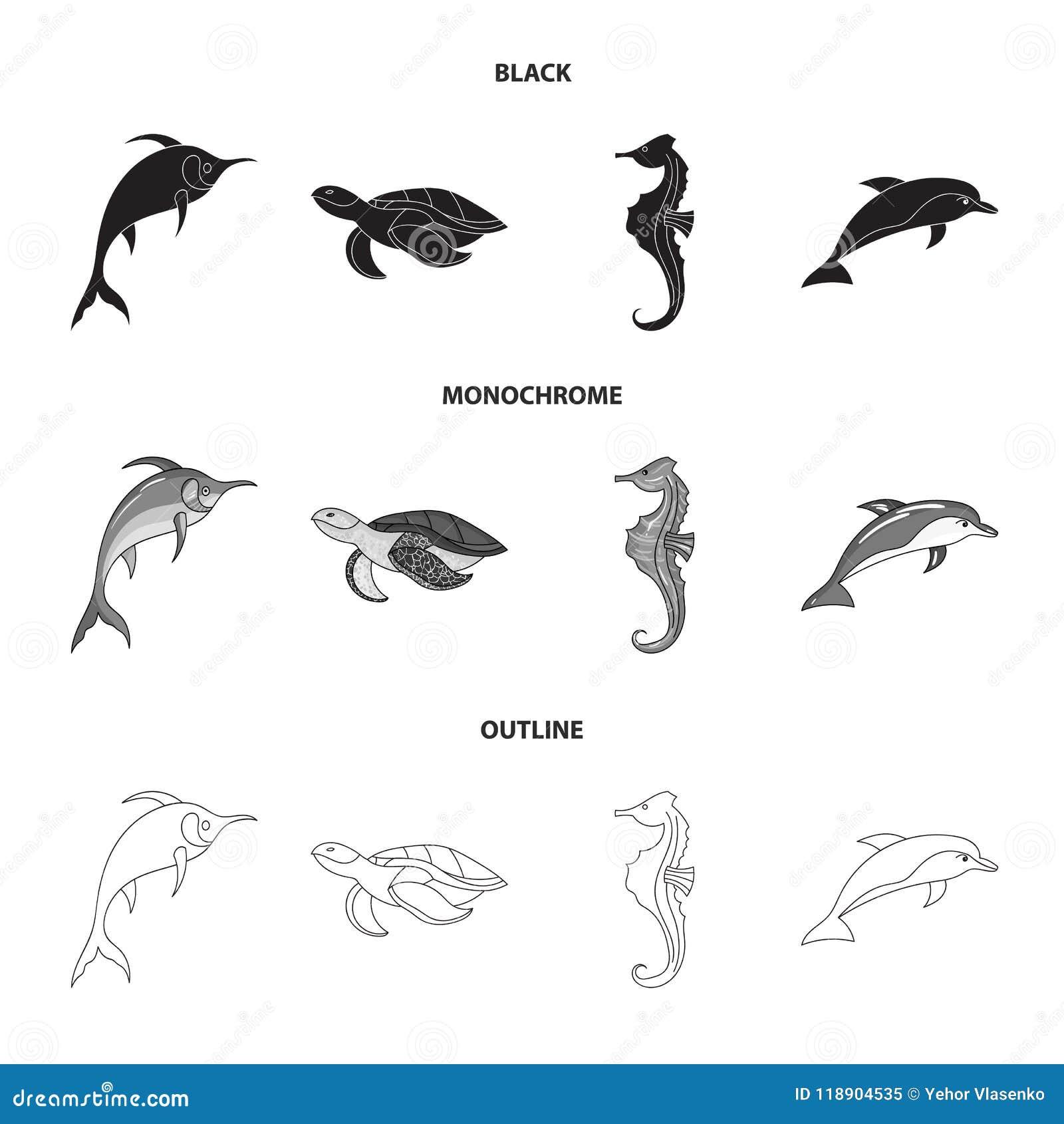 默林、乌龟和其他种类 海洋动物设置了在黑的汇集象,单色,概述样式传染媒介标志股票
