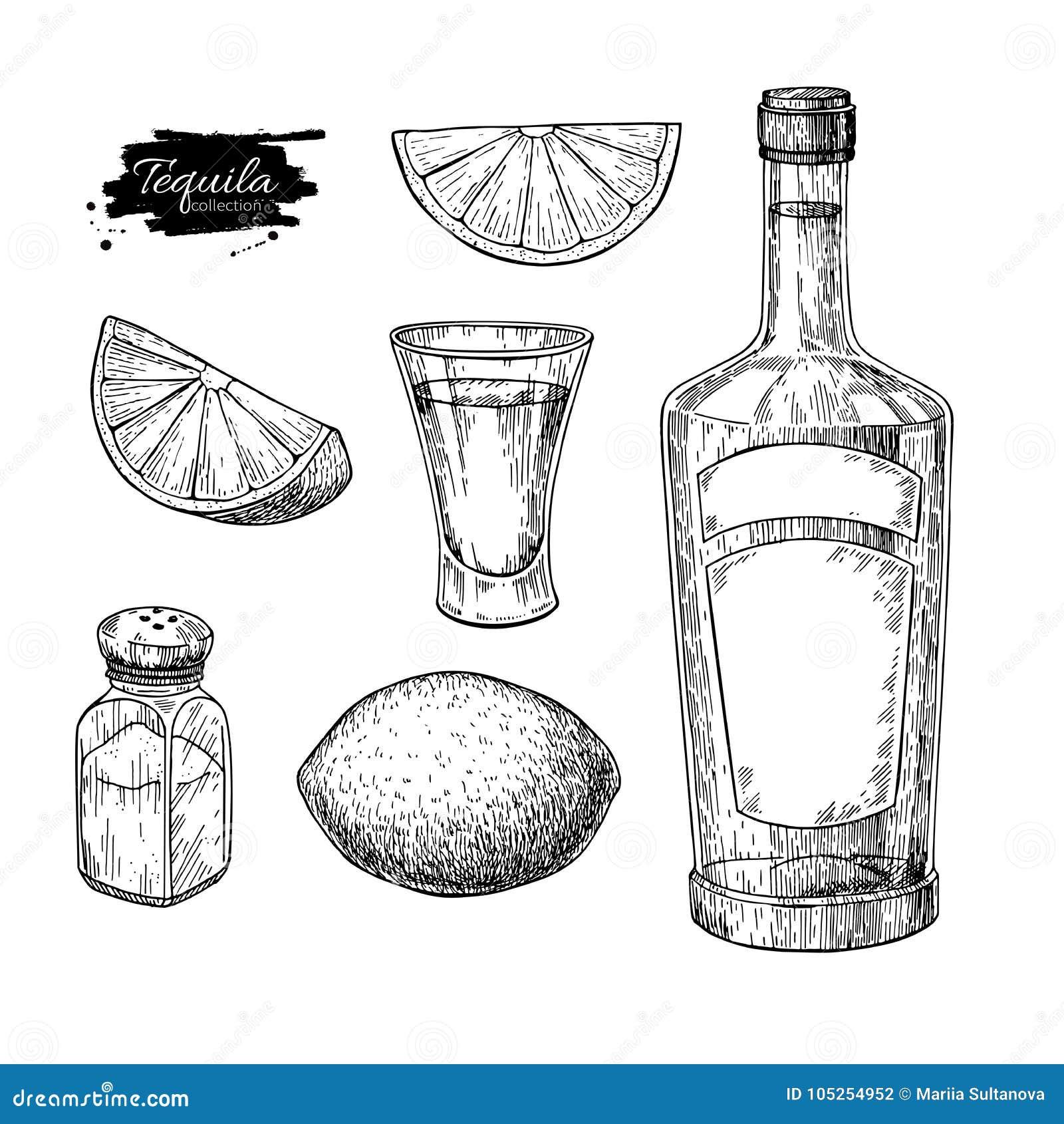 龙舌兰酒瓶、盐瓶和小玻璃与石灰 墨西哥酒精饮料传染媒介图画