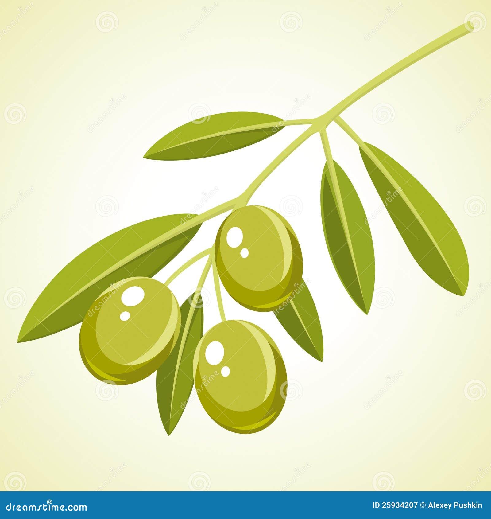 橄榄 免版税图库摄影 图片