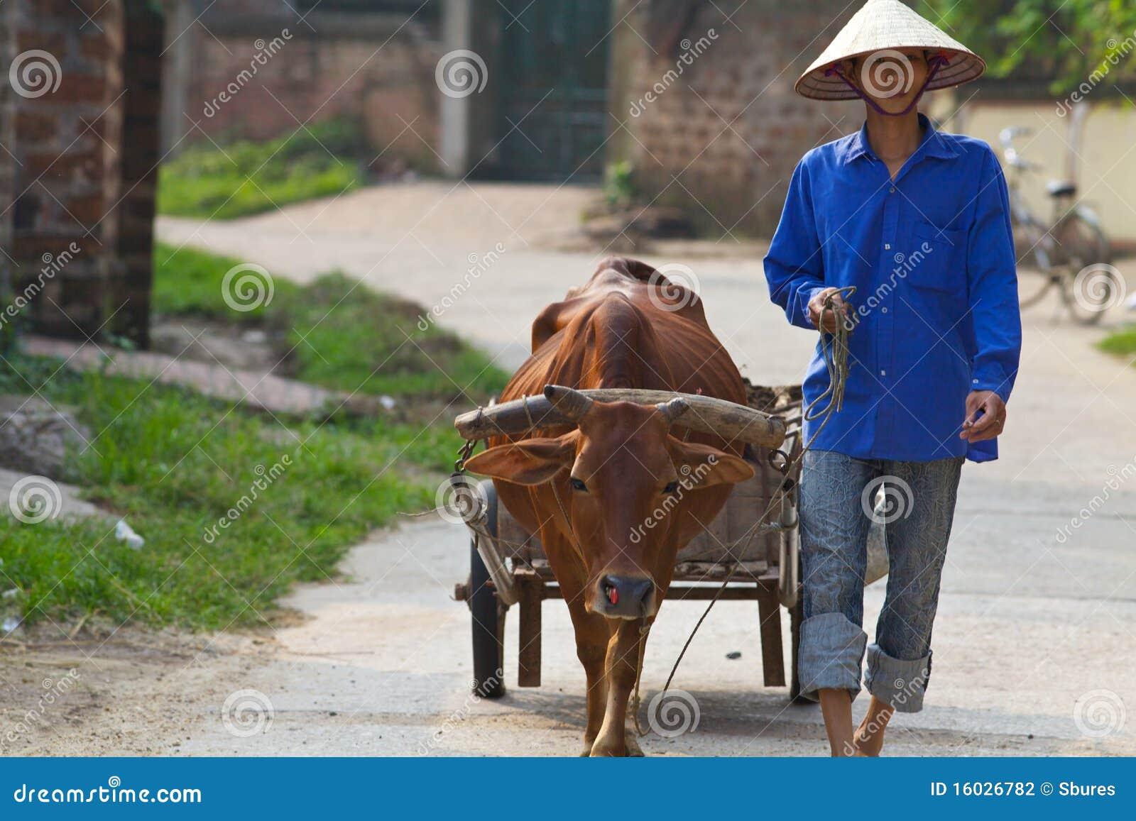 农夫色人和狗_水牛农夫越南人水