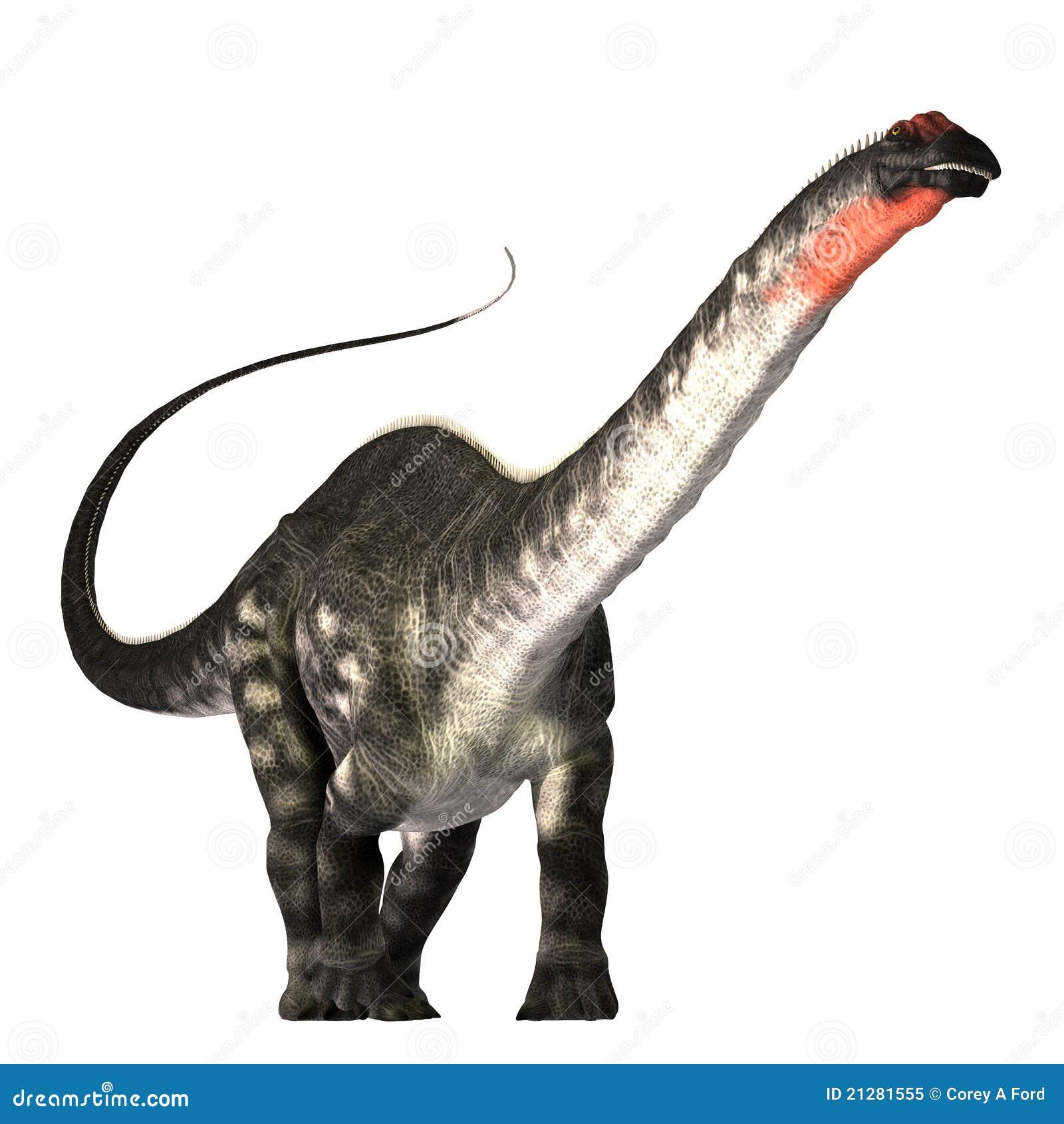 也美国apatasaurus作为是雷龙浏览的叫的恐龙执行时代化石查找巨型图片