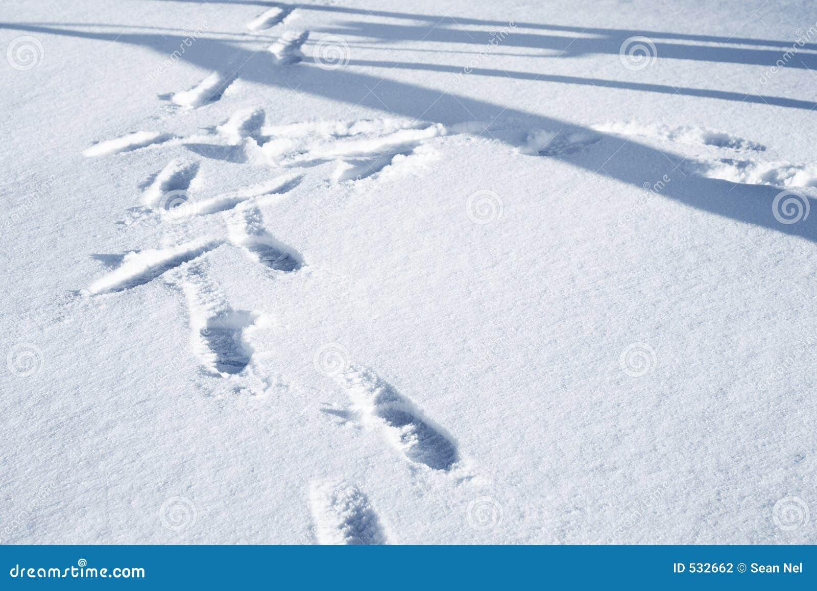 Download 02慕尼黑 库存照片. 图片 包括有 按蚊, 冬天, 人们, 脚印, 冰冷, 蓝色, 冷颤, 背包, 未知, 人员 - 532662