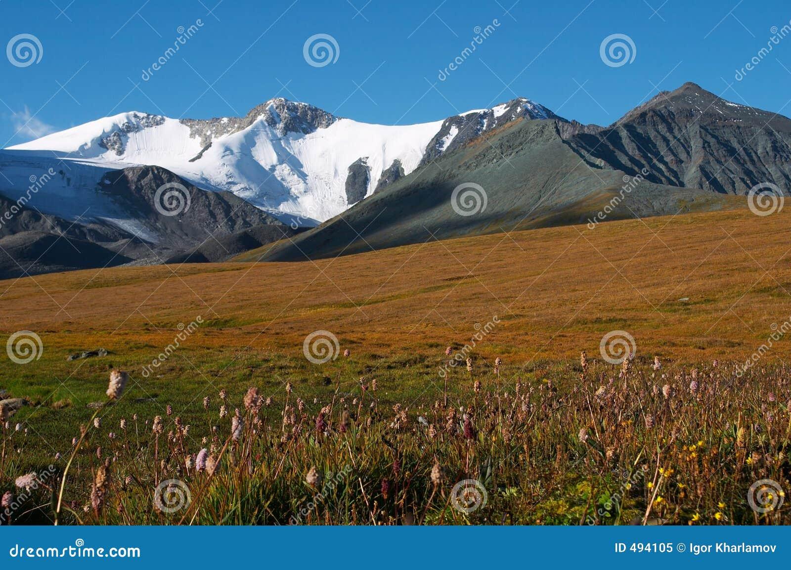 02 горы ландшафта