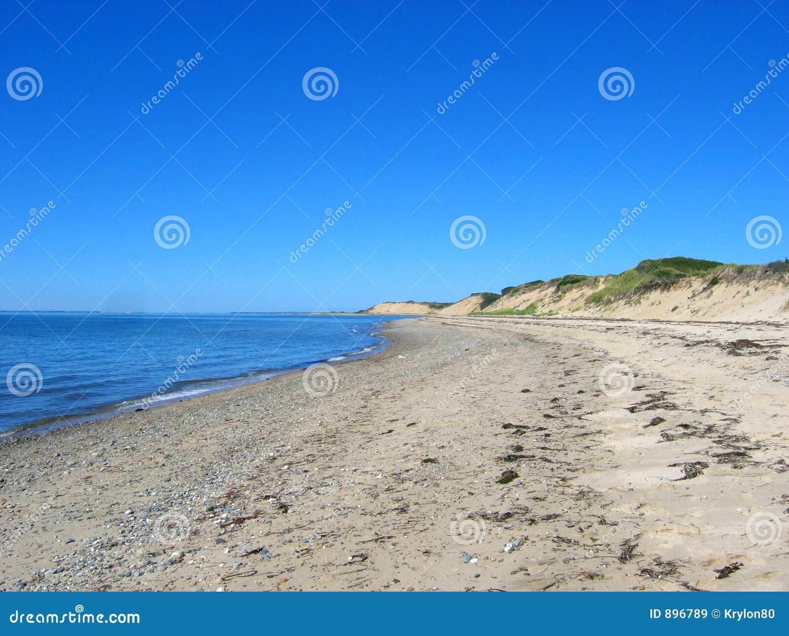 02 cape cod na plaży