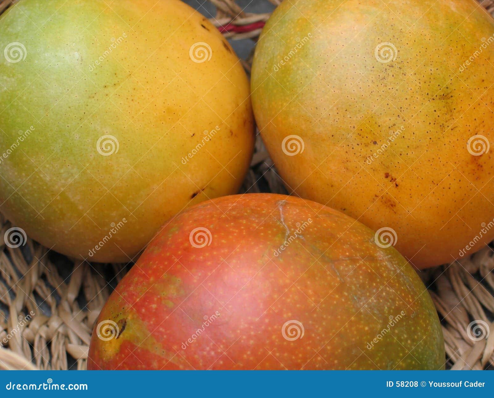 0942 mango