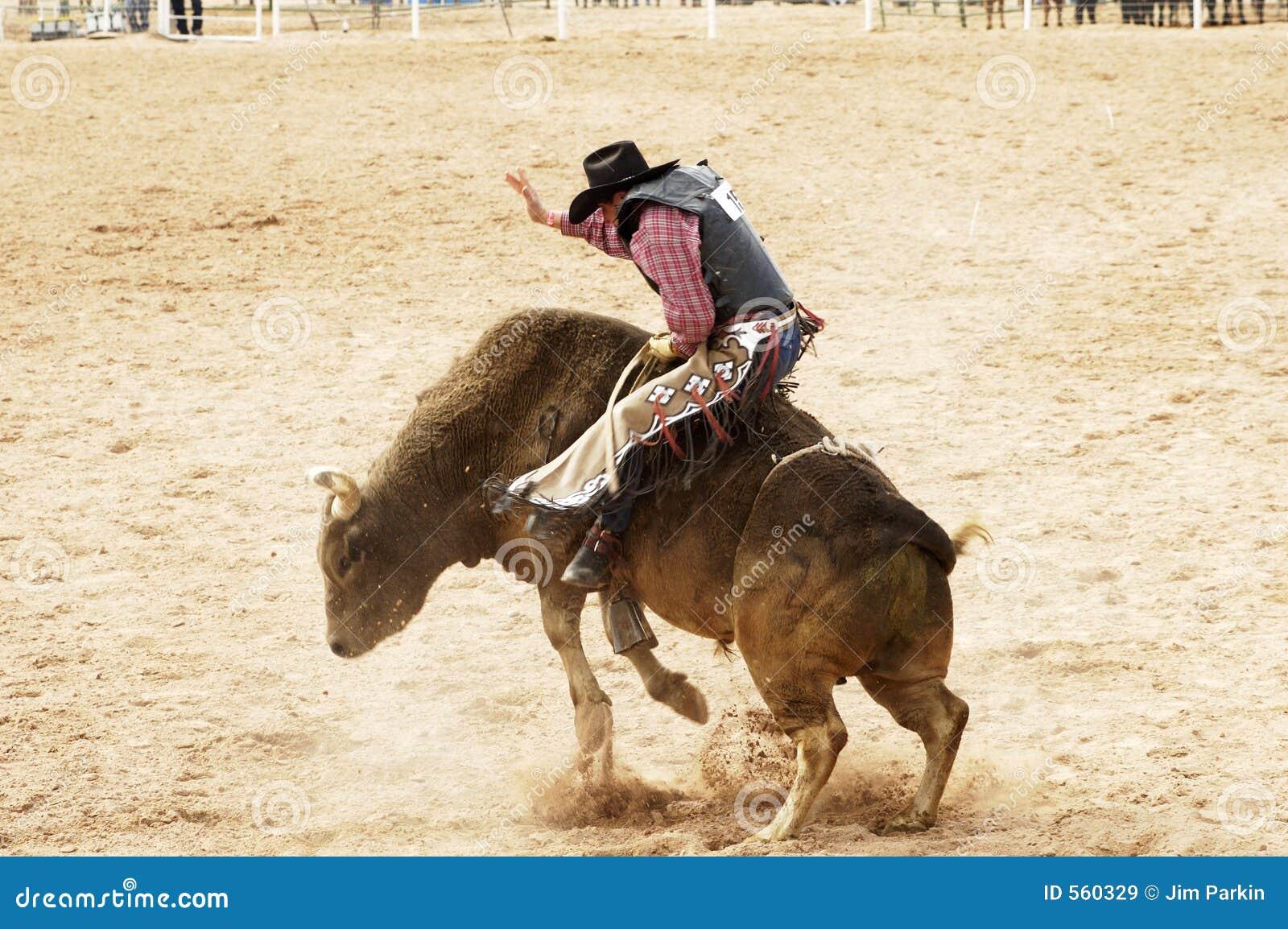 1公牛骑马