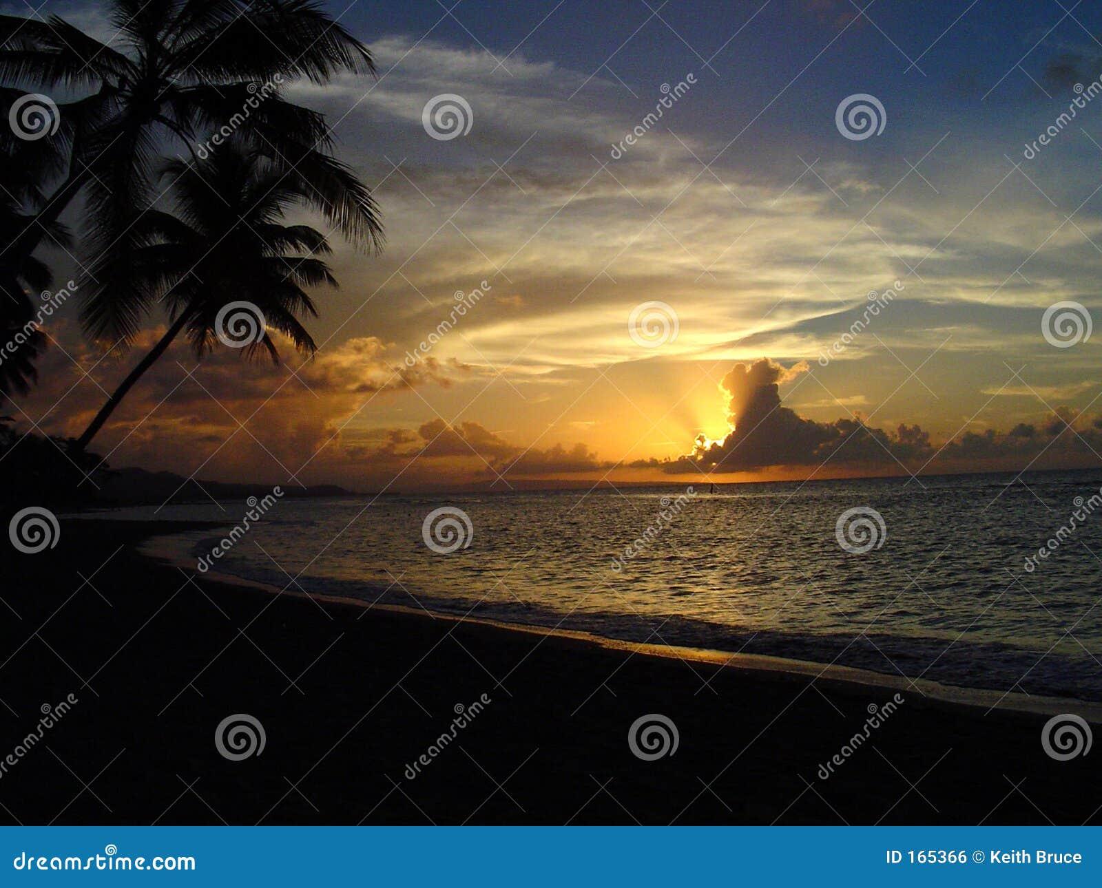 1完美日落