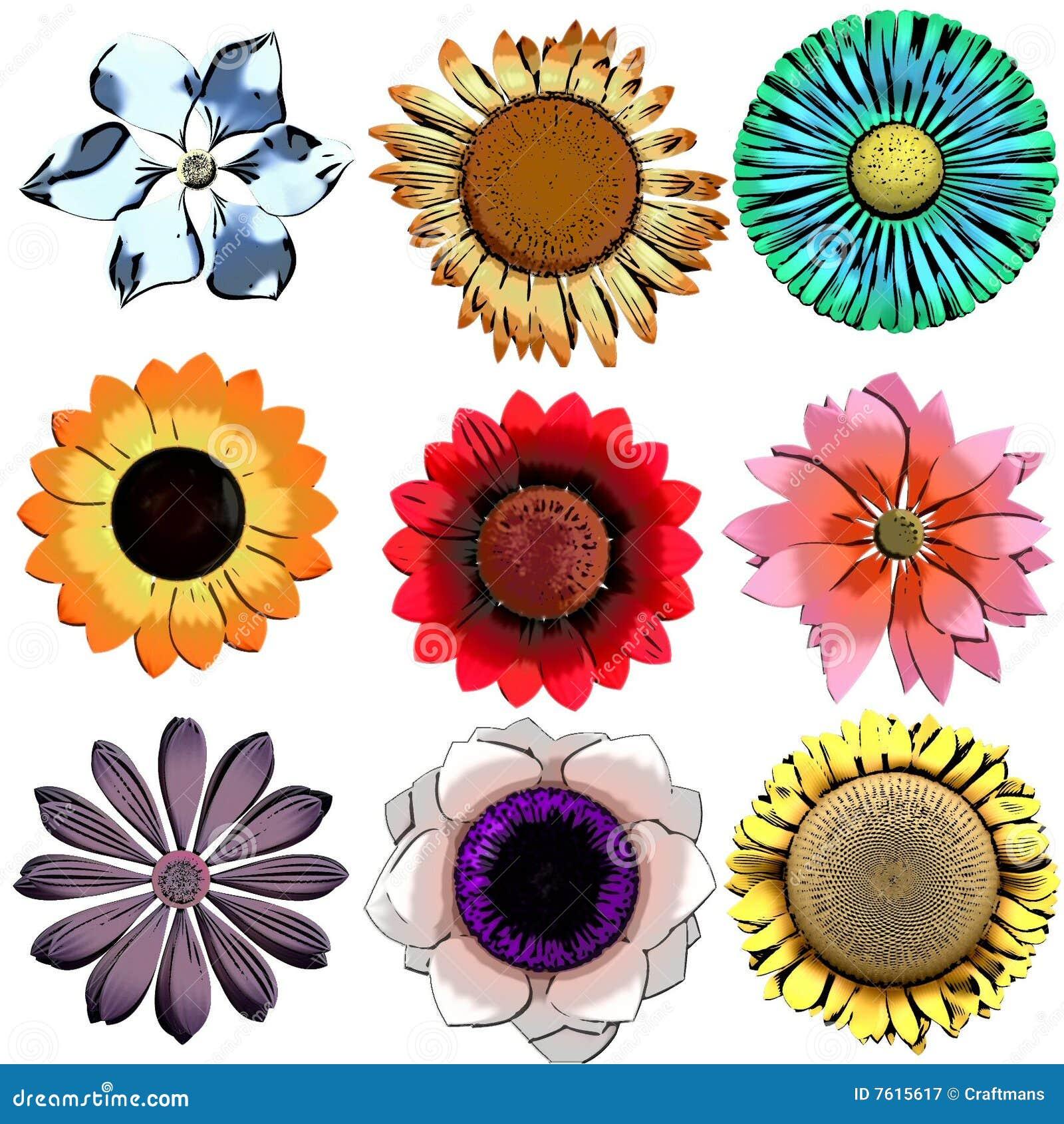 1朵收集craftmans花