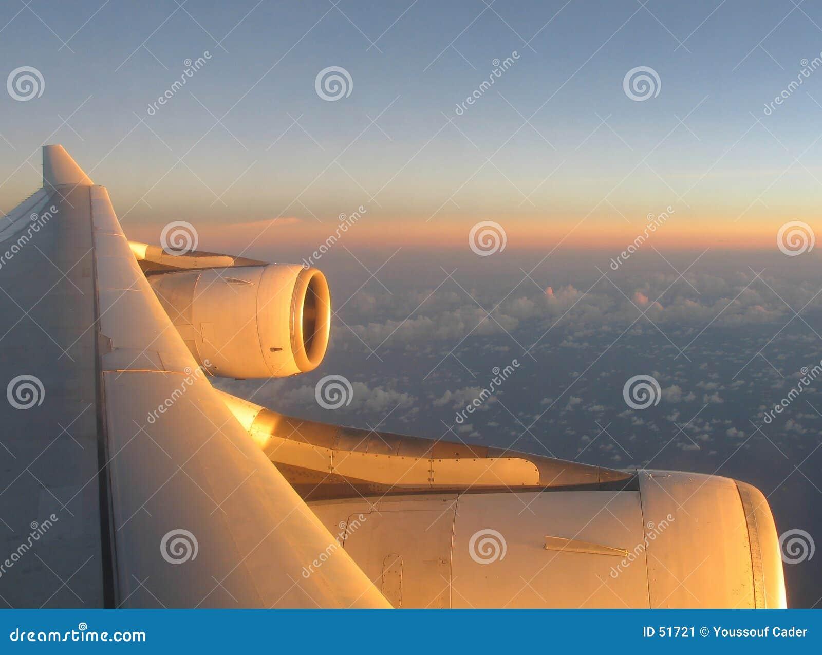 1 крыло самолета