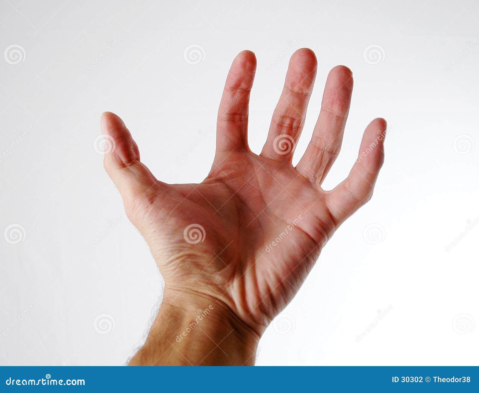 1 ręka