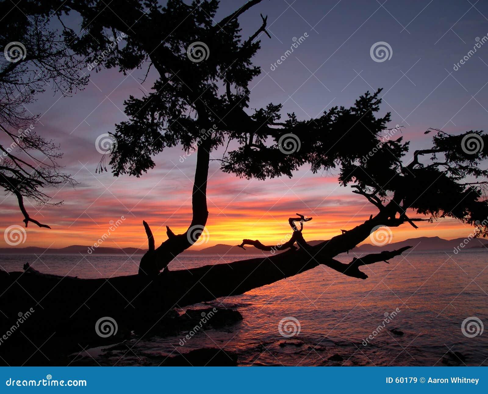 1 solnedgång