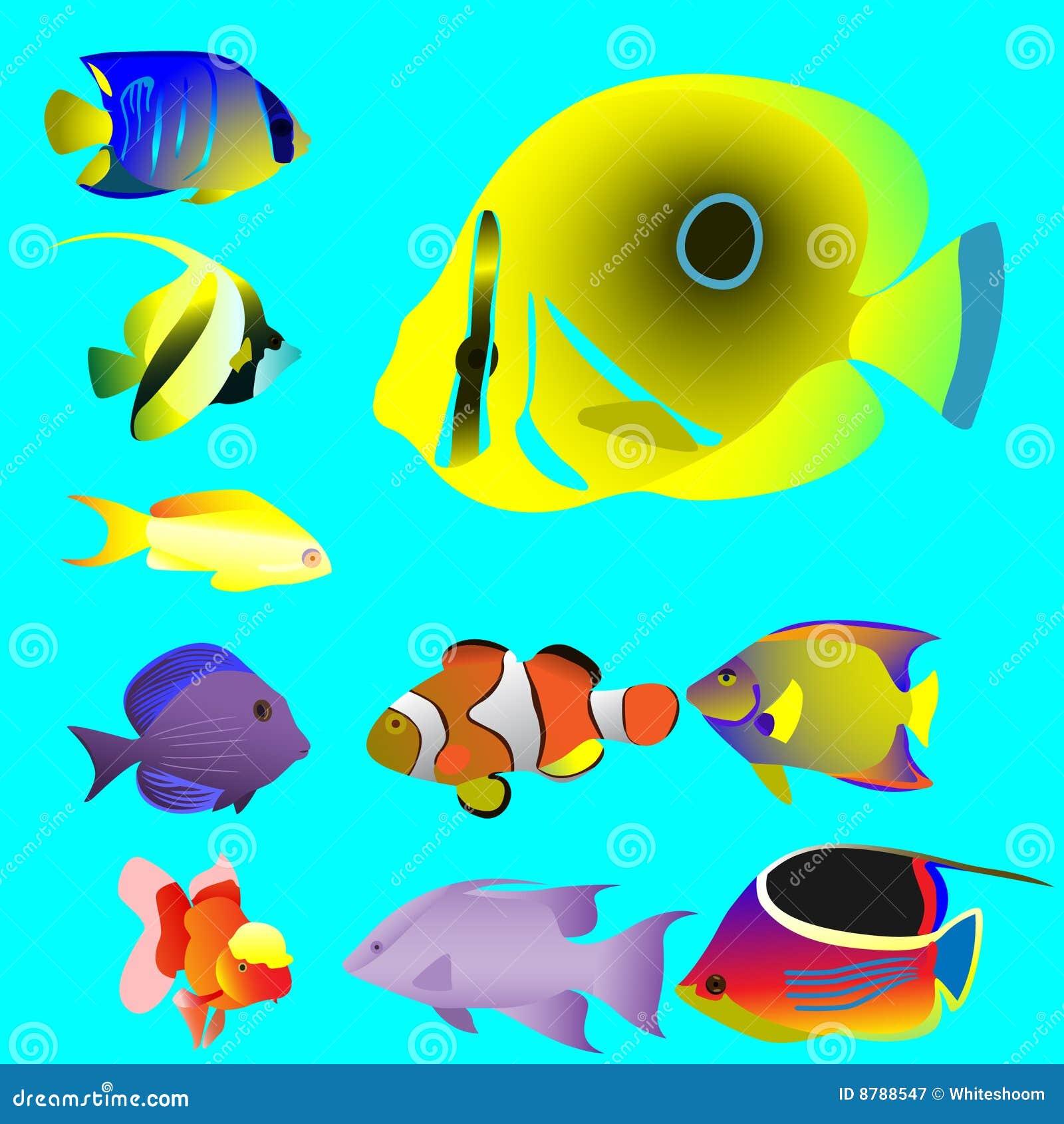 10 helle ozeanische kleine fische vektor abbildung for Kleine fische