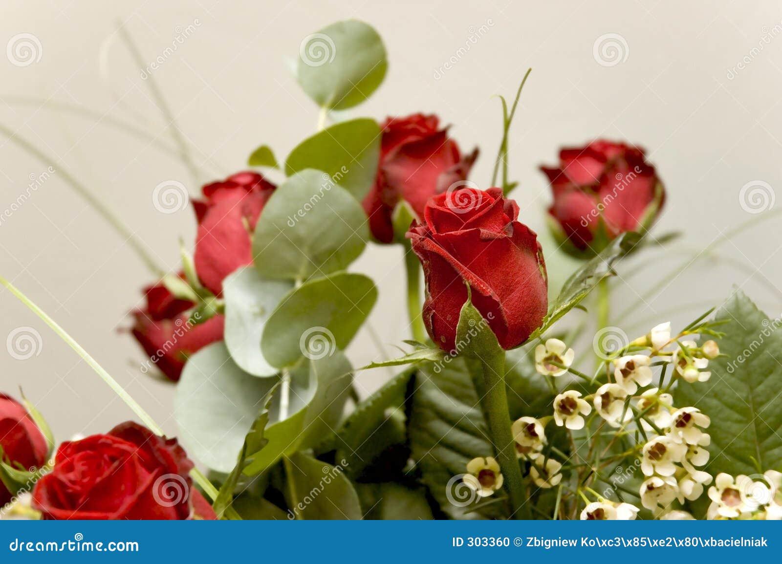 10 kwiatów
