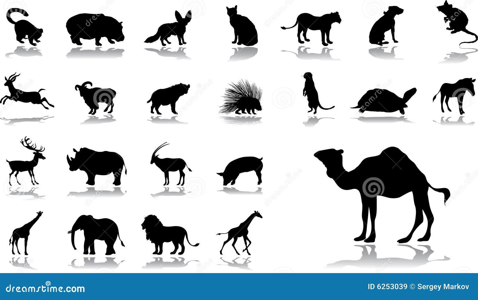 11 установленная икона животных большая