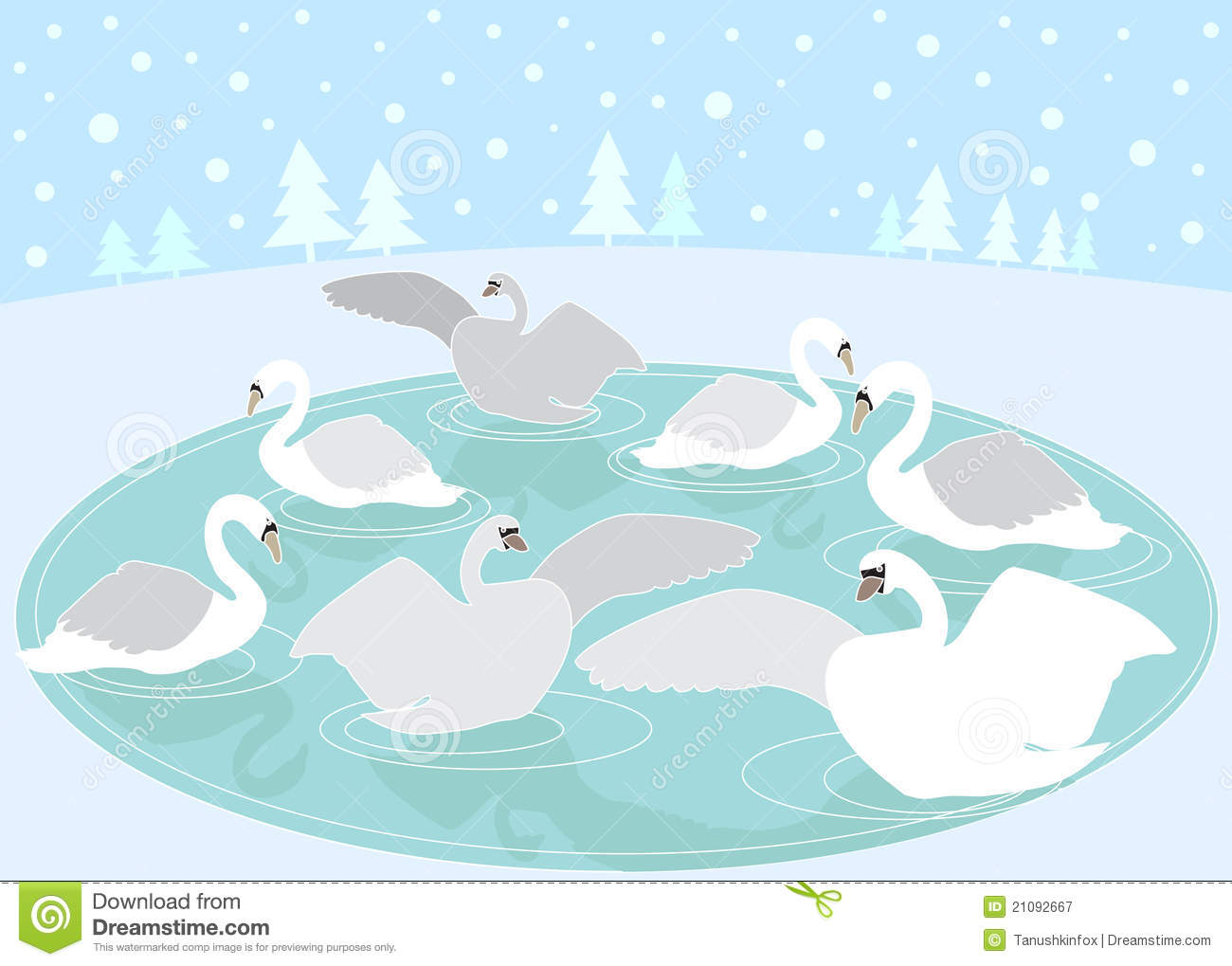 ... Free Stock Photography: 12 Days of Christmas: 7 Swans a Swimming