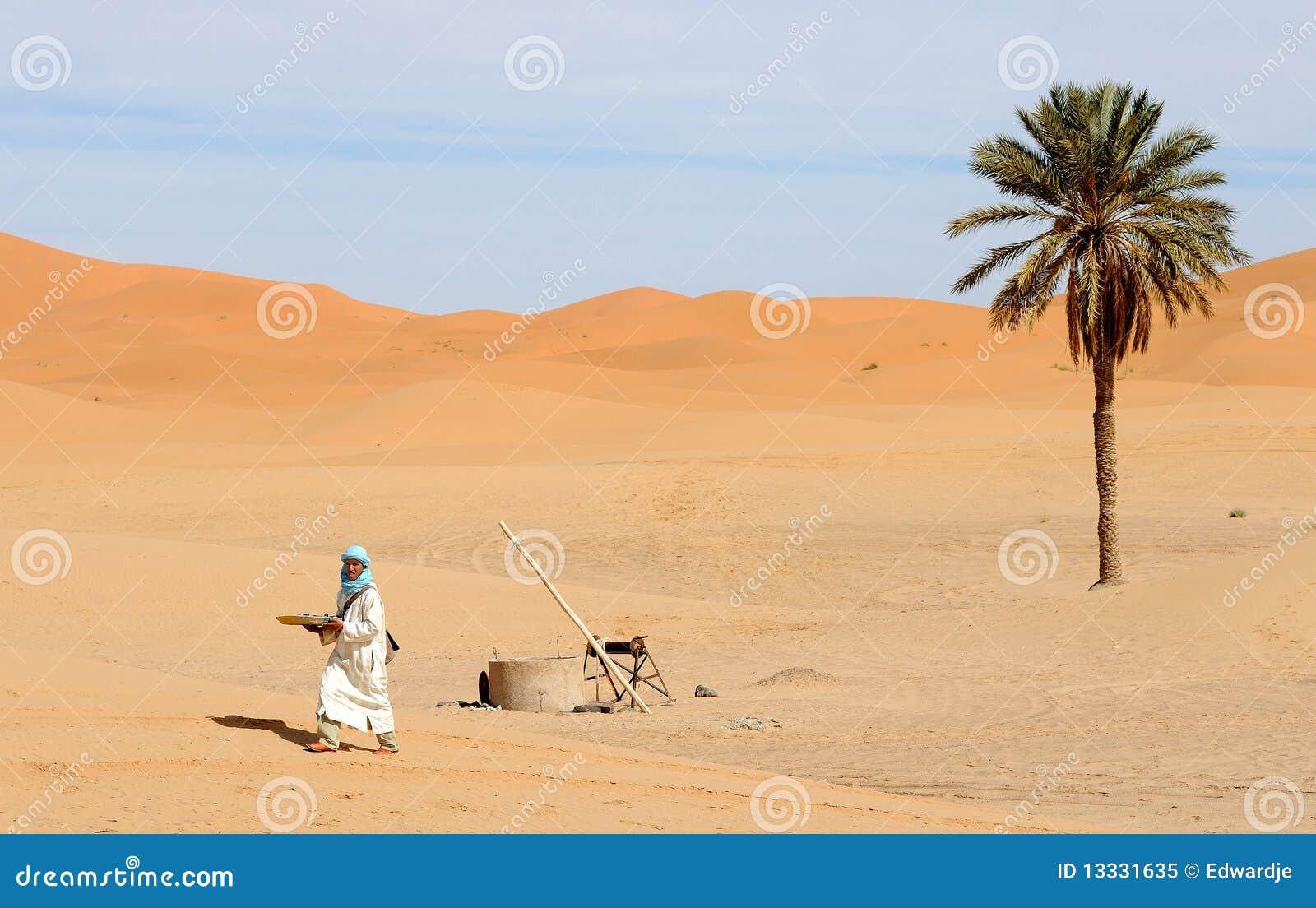 12 pustynny moroccan