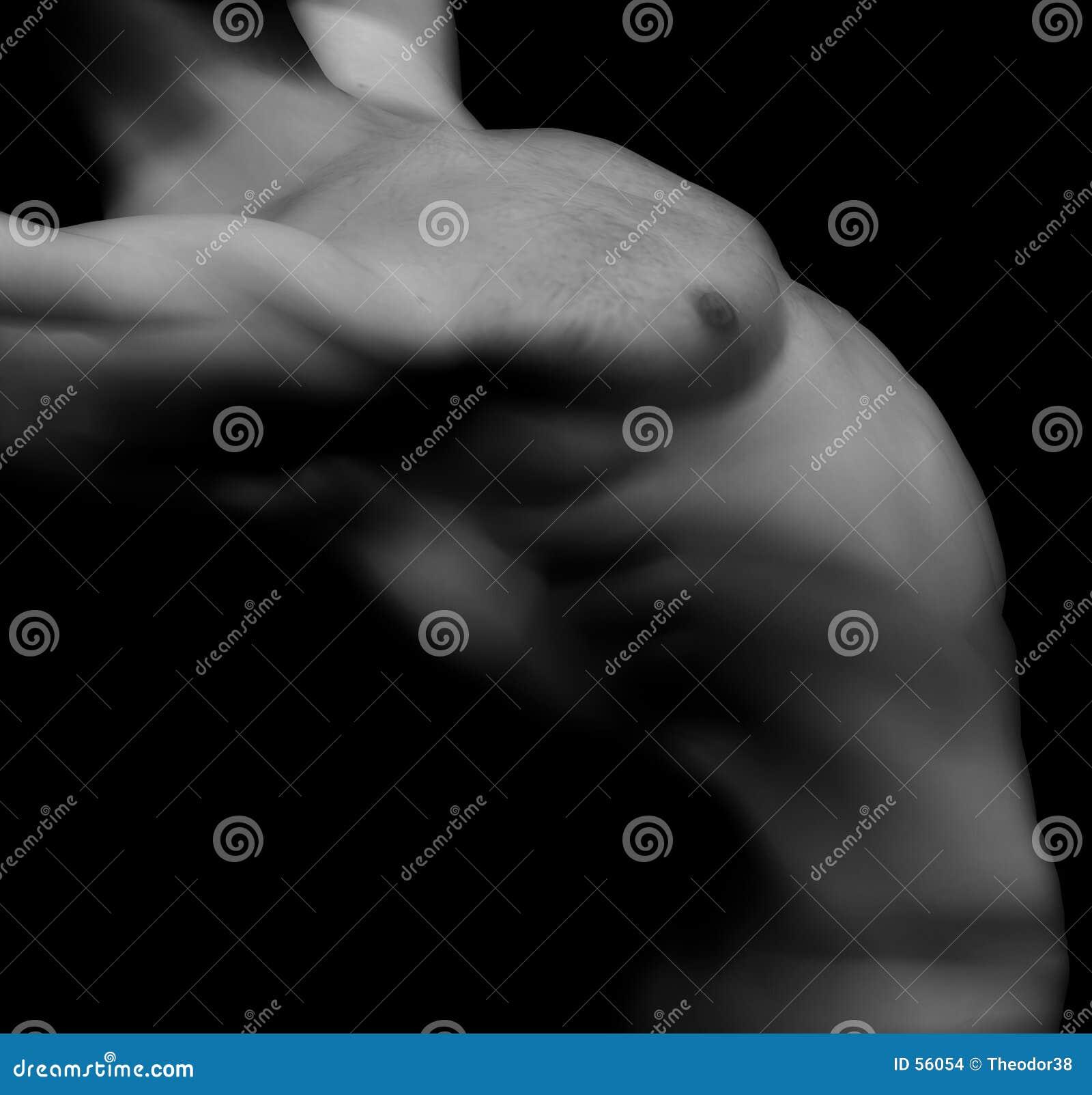 13 αρσενικός nude
