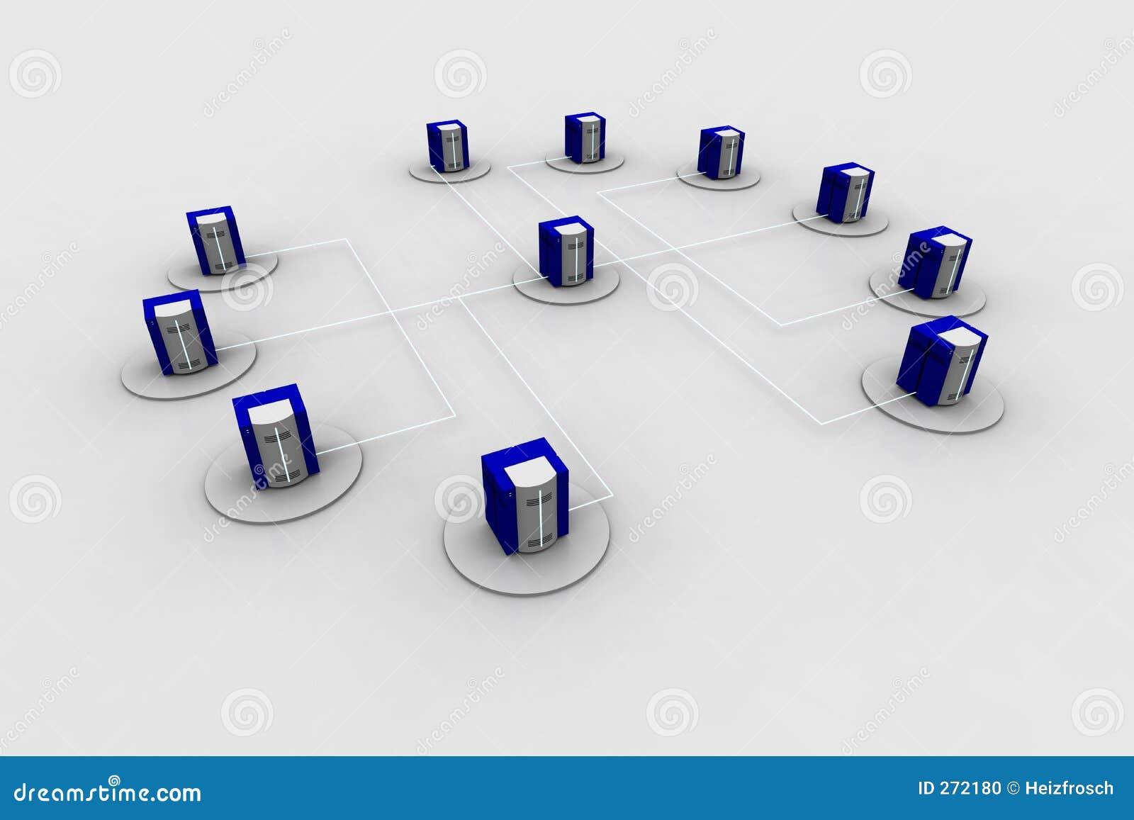 13 sieci