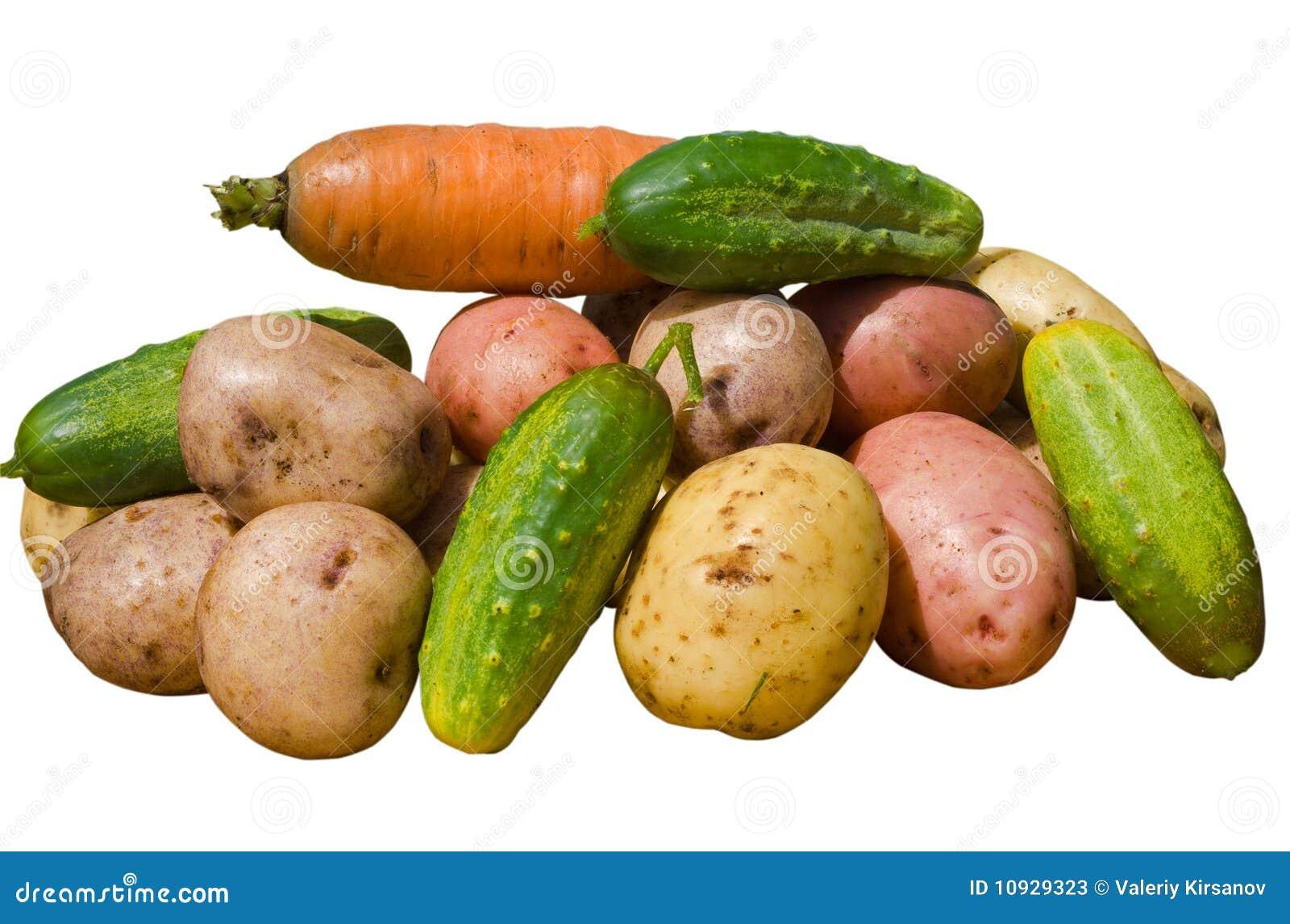14 овоща
