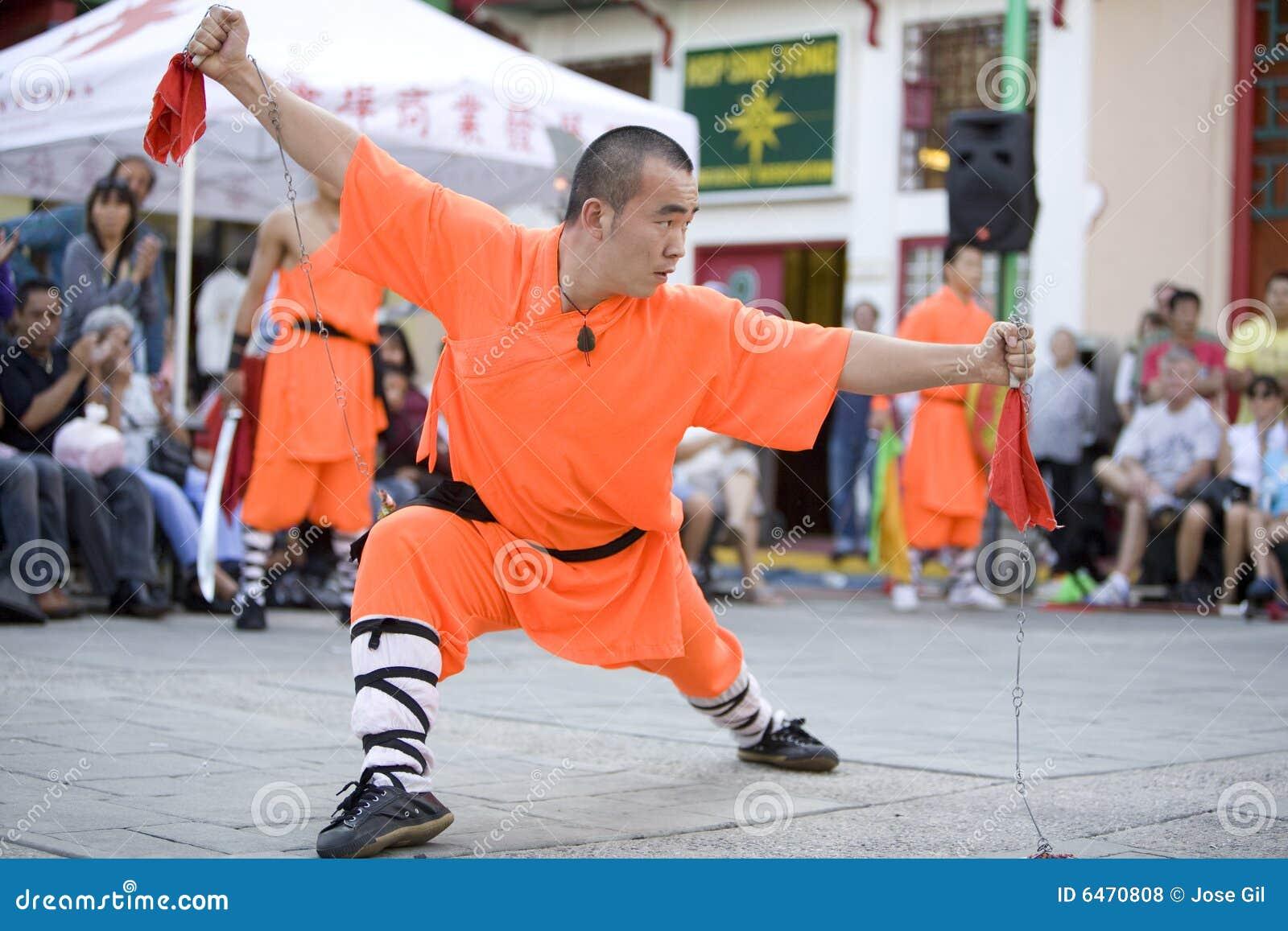 16 shaolin kung - fu.