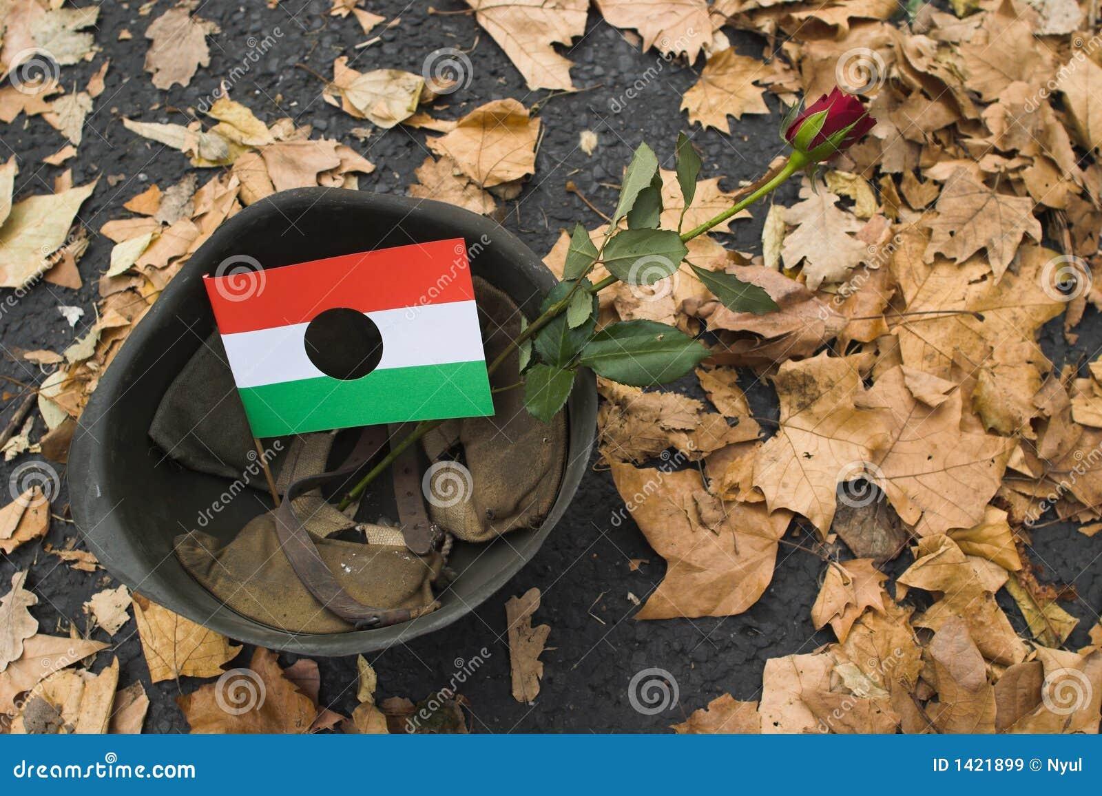 1956年庆祝匈牙利