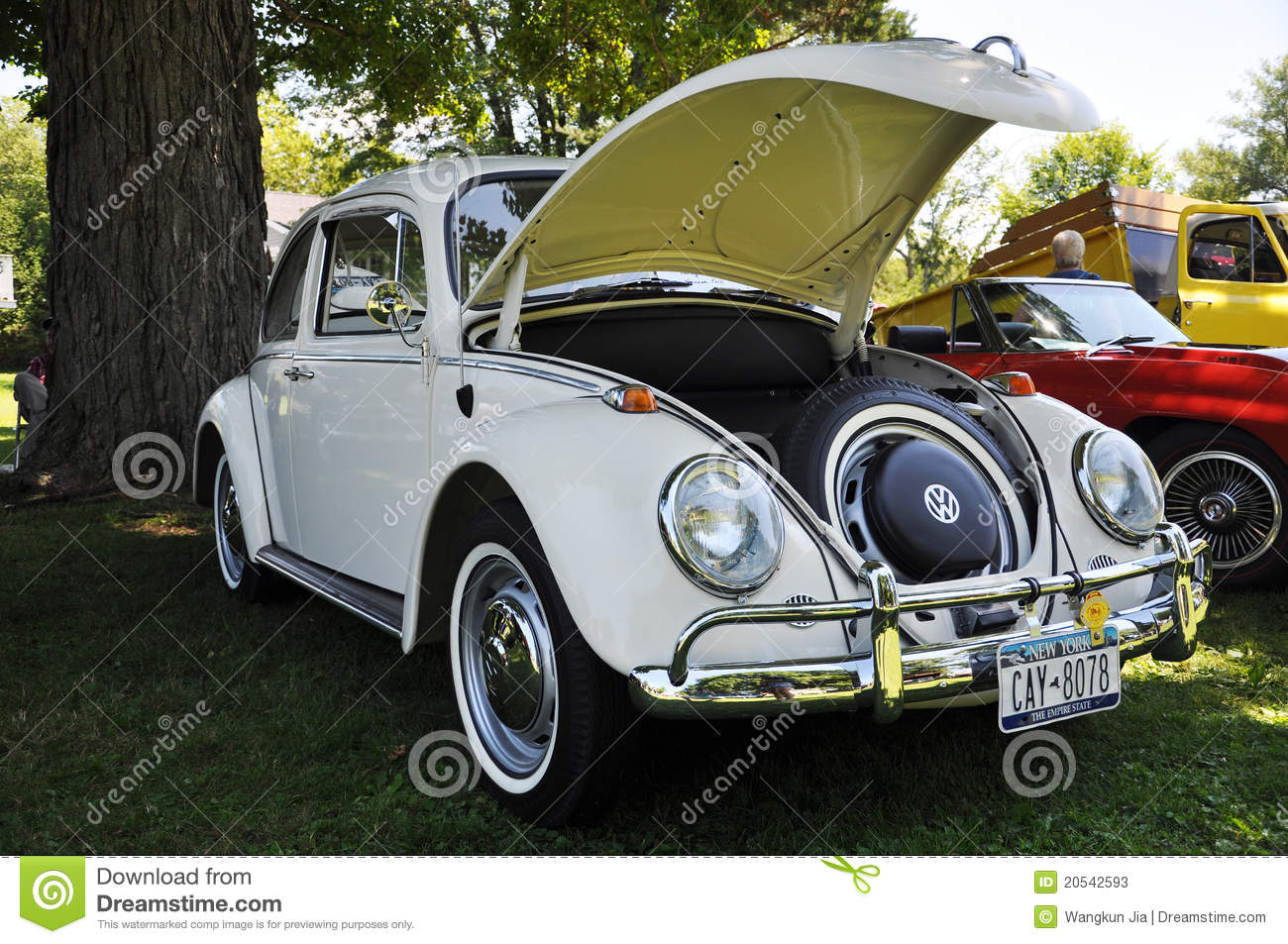 1976 White Volkswagen Beetle Editorial Stock Photo - Image of 1976, festival: 20542593